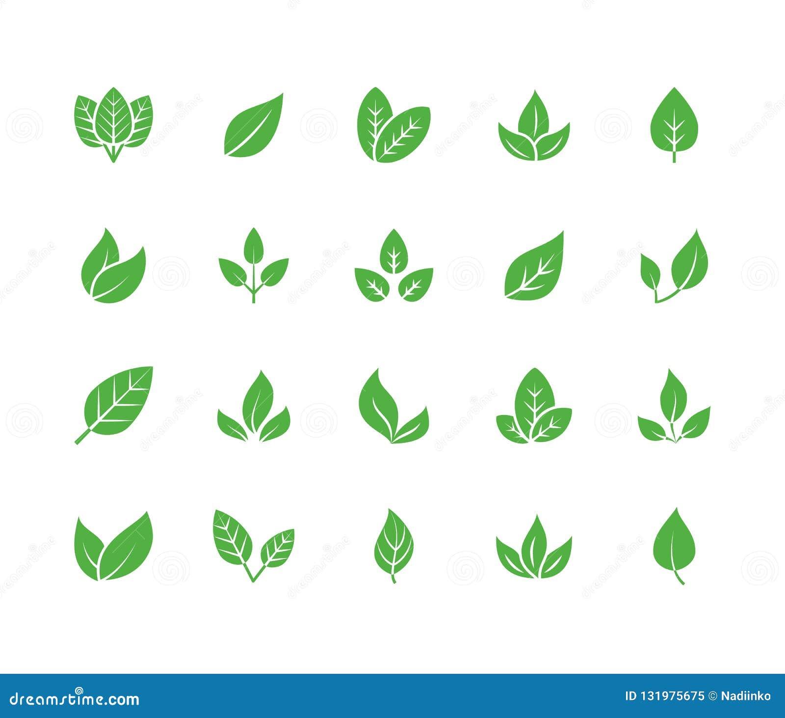 Liścia glifu płaskie ikony Roślina, drzewo opuszcza ilustracje Znaki żywność organiczna, naturalny materiał, życiorys składnik, e