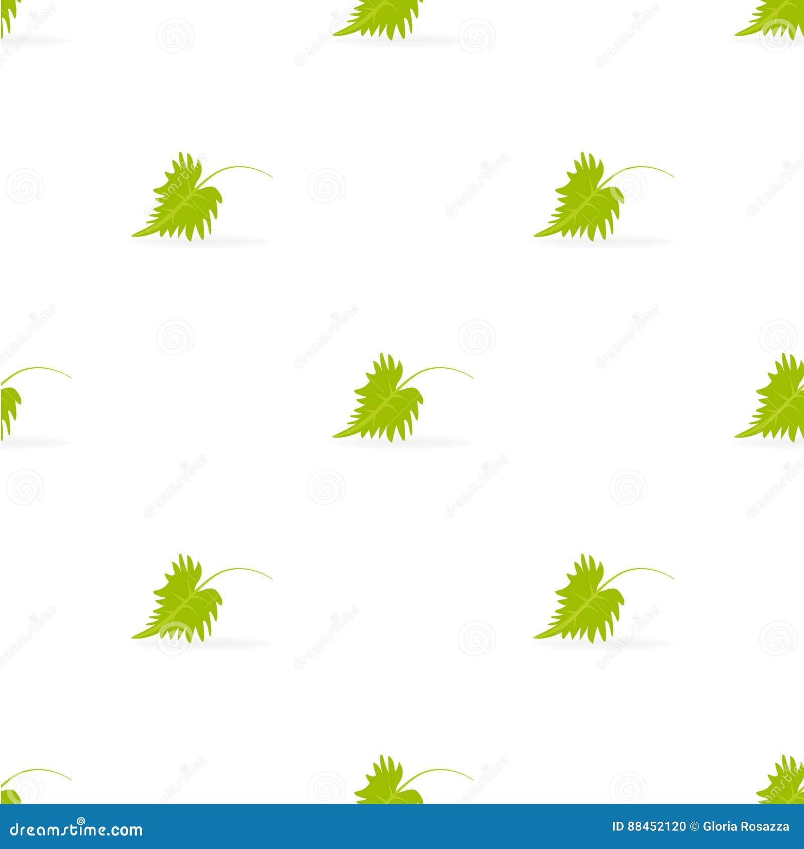 Liścia wzór