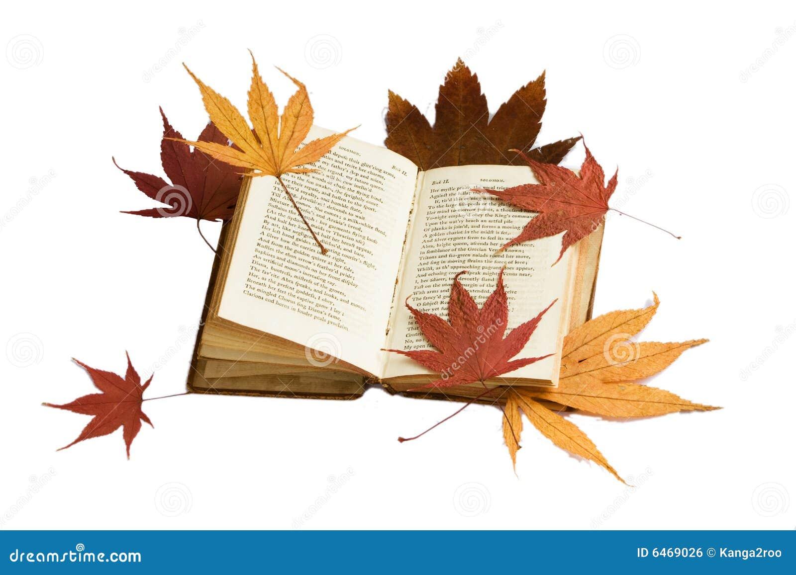 Liście jesienią książki