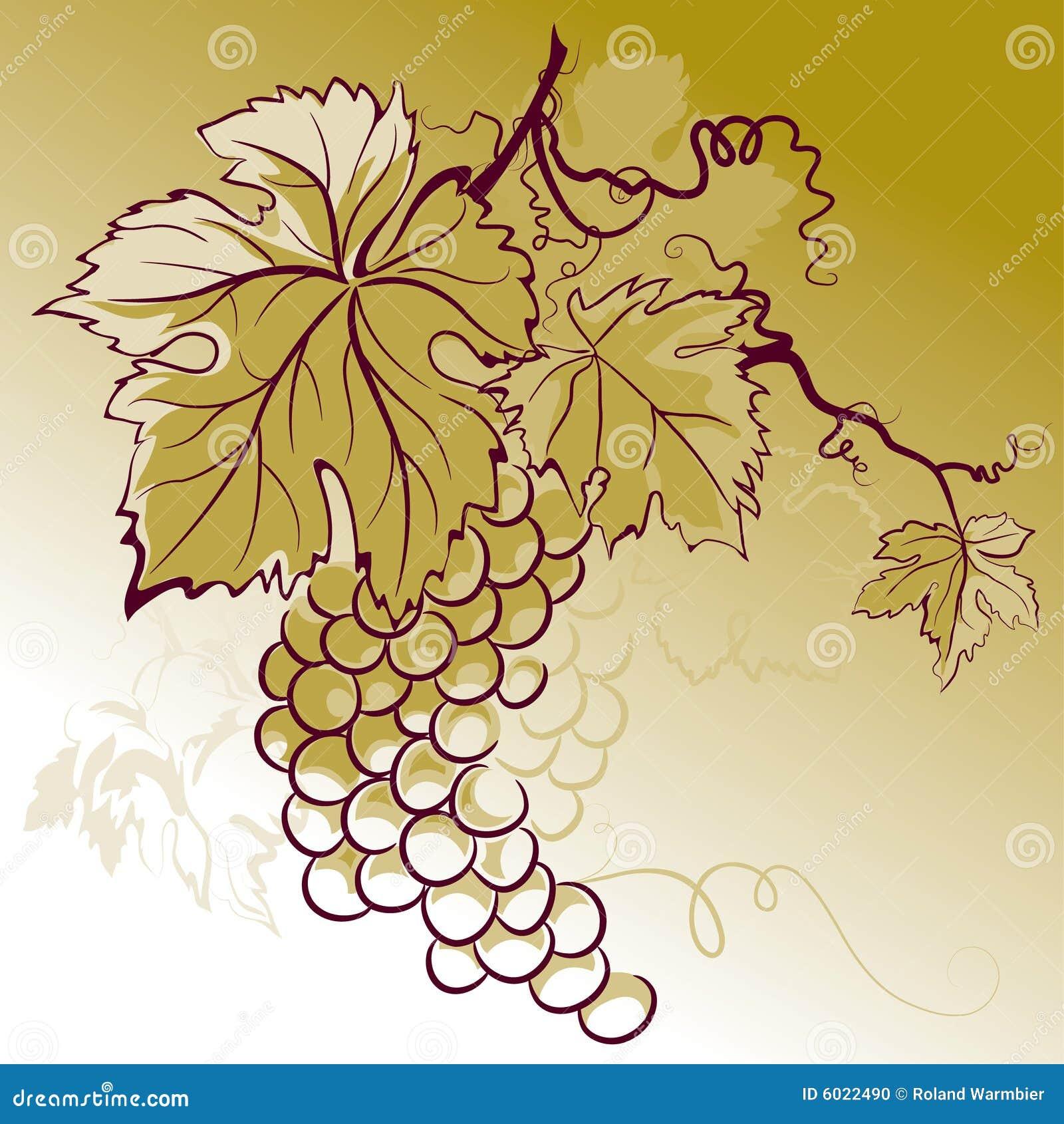 Liscie Winogron Ilustracja Wektor Ilustracja Zlozonej Z Jagody 6022490