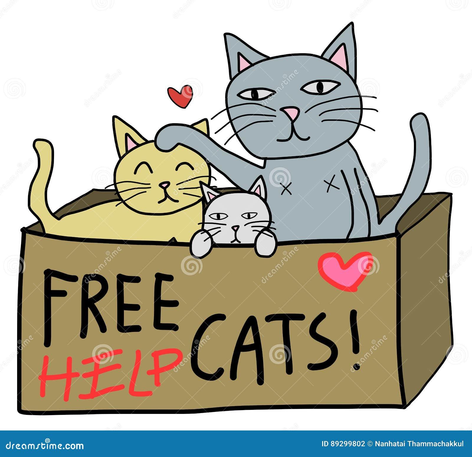 Libere el gato