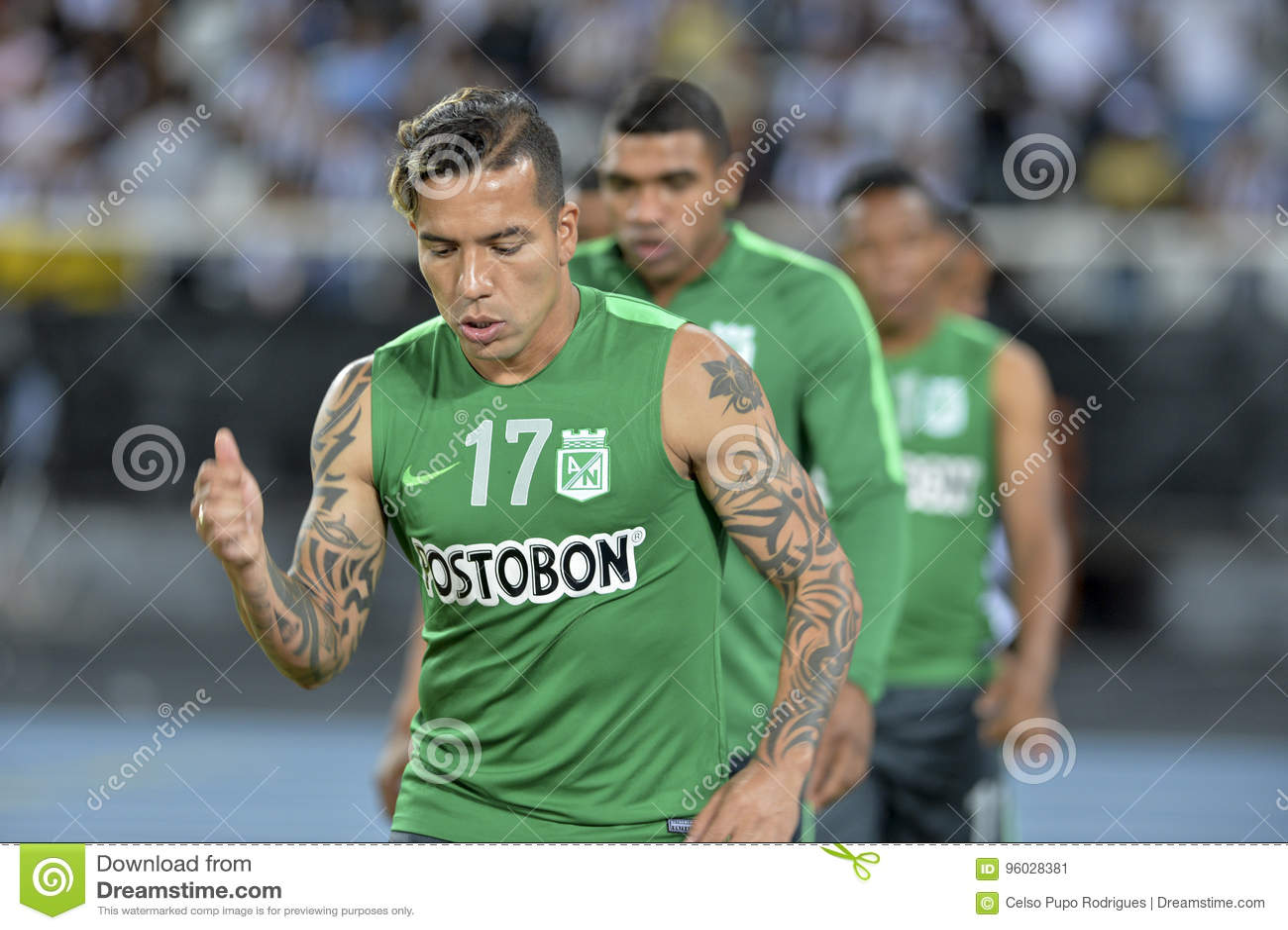Libertadores mistrzostwo 2017