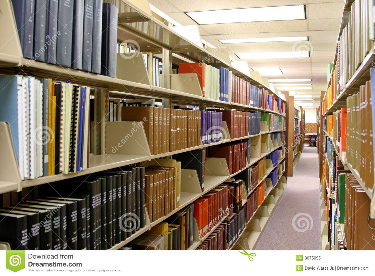 Library Royalty Free Stock Photo Image 8075895