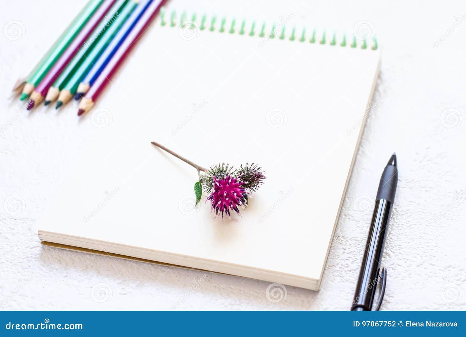 Libreta Para Dibujo: Libreta Para Dibujar Y El Sistema De Lápices En Tonos
