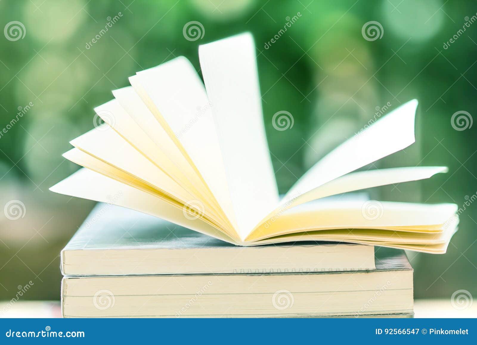 Libro aperto nel bokeh della natura di bellezza