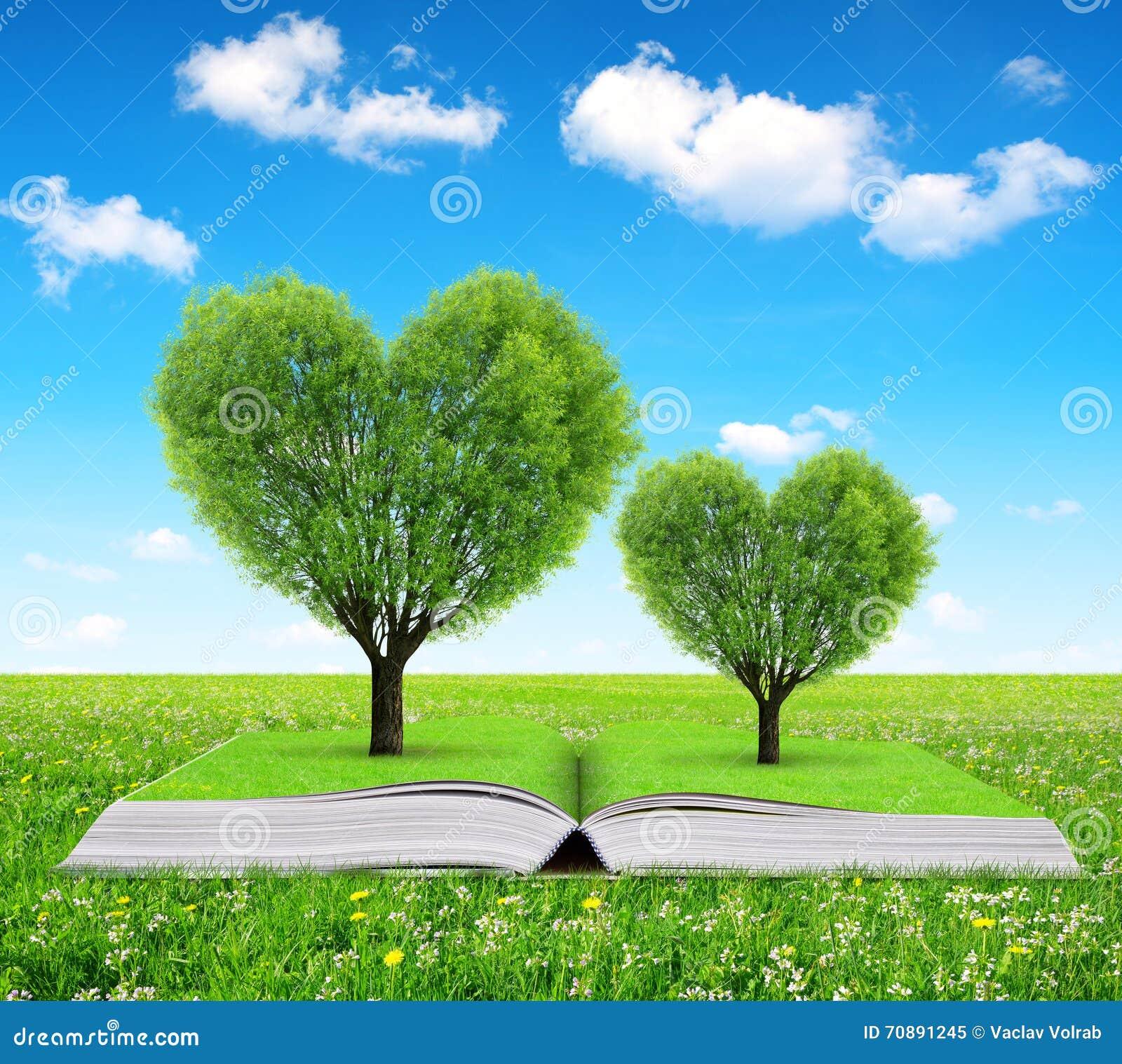 Libro Con árboles En La Forma Del Corazón Imagen De Archivo Imagen