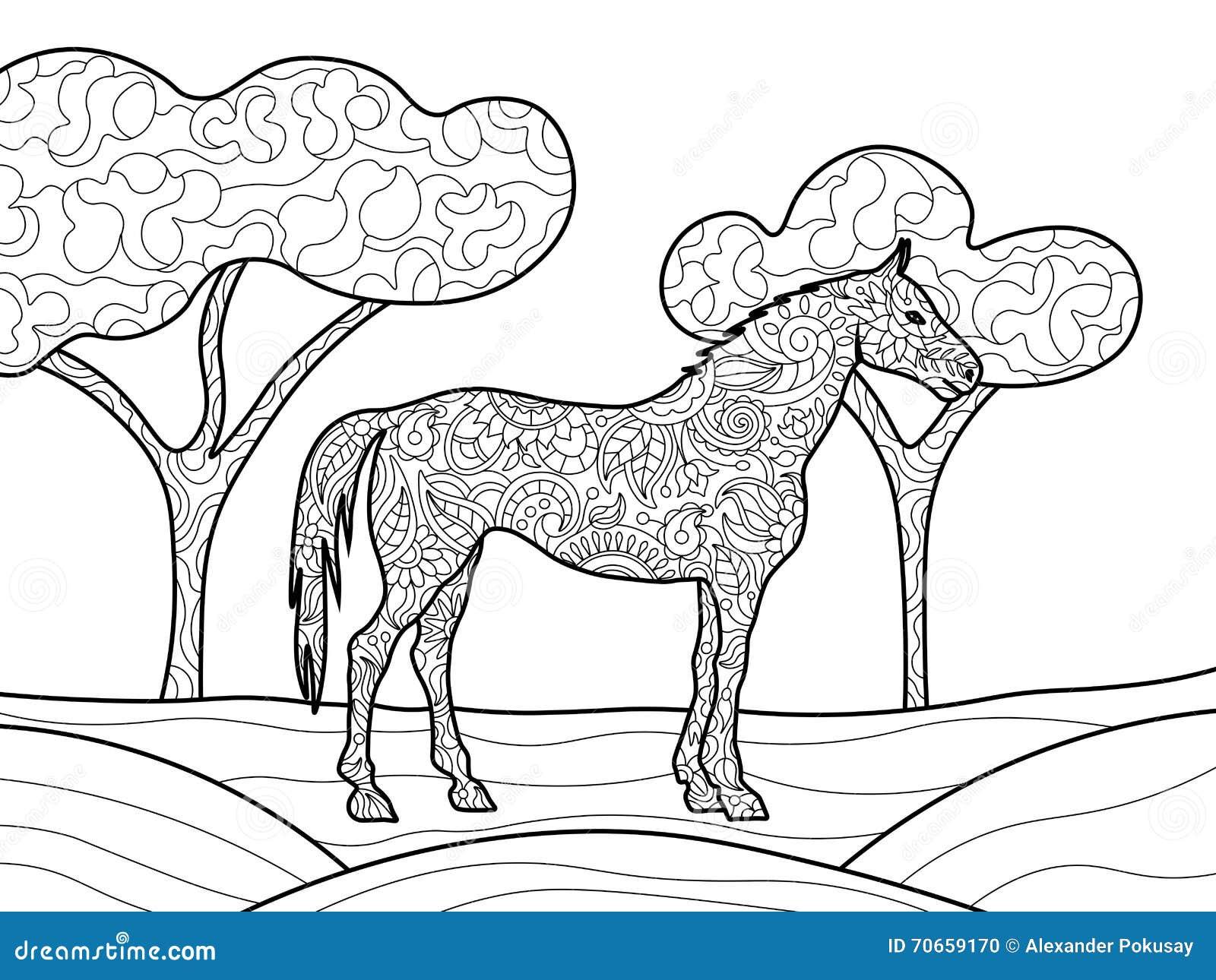 Libro Da Colorare Del Cavallo Per Il Vettore Degli Adulti