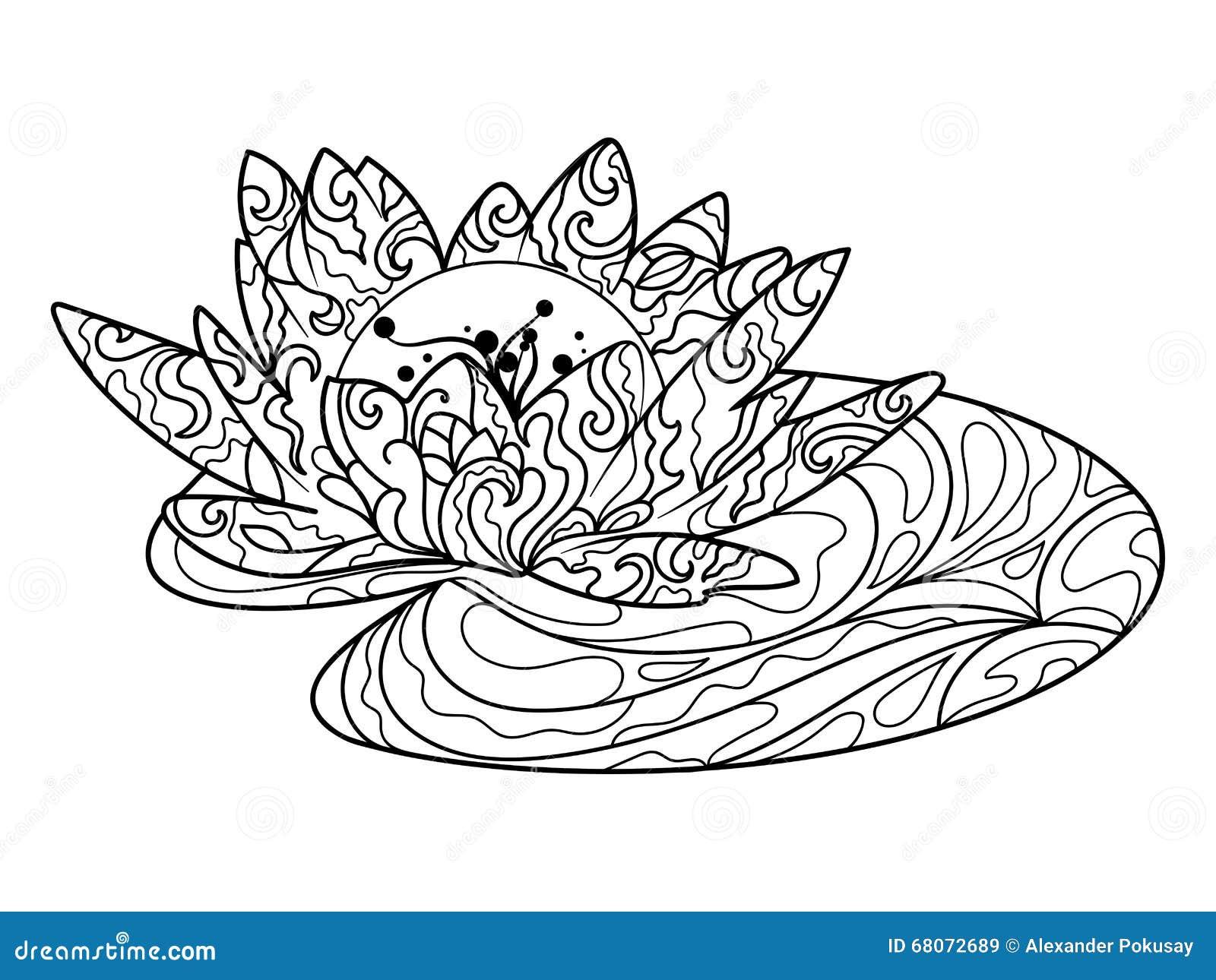 Libro Da Colorare Del Fiore Di Lotus Per Il Vettore Degli Adulti