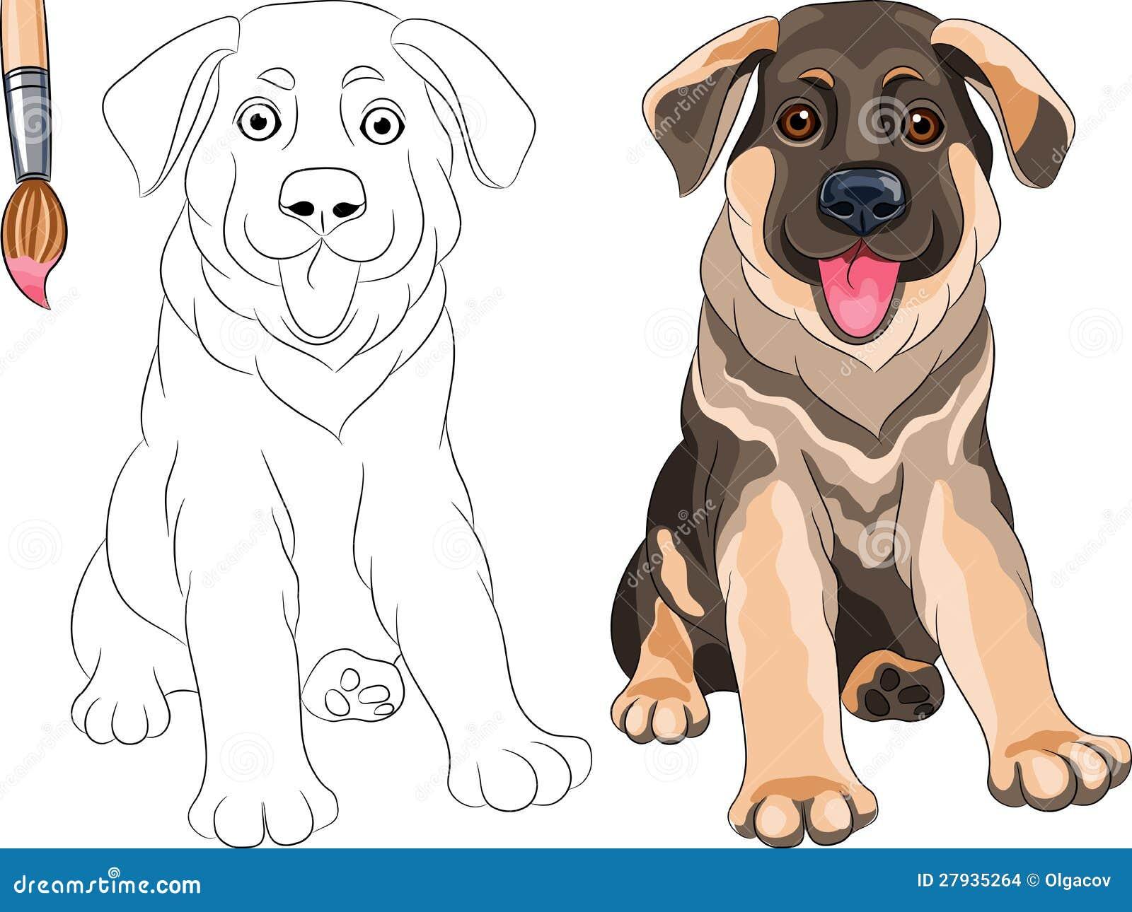 Libro da colorare del pastore del cucciolo immagini stock - Cucciolo da colorare stampabili ...