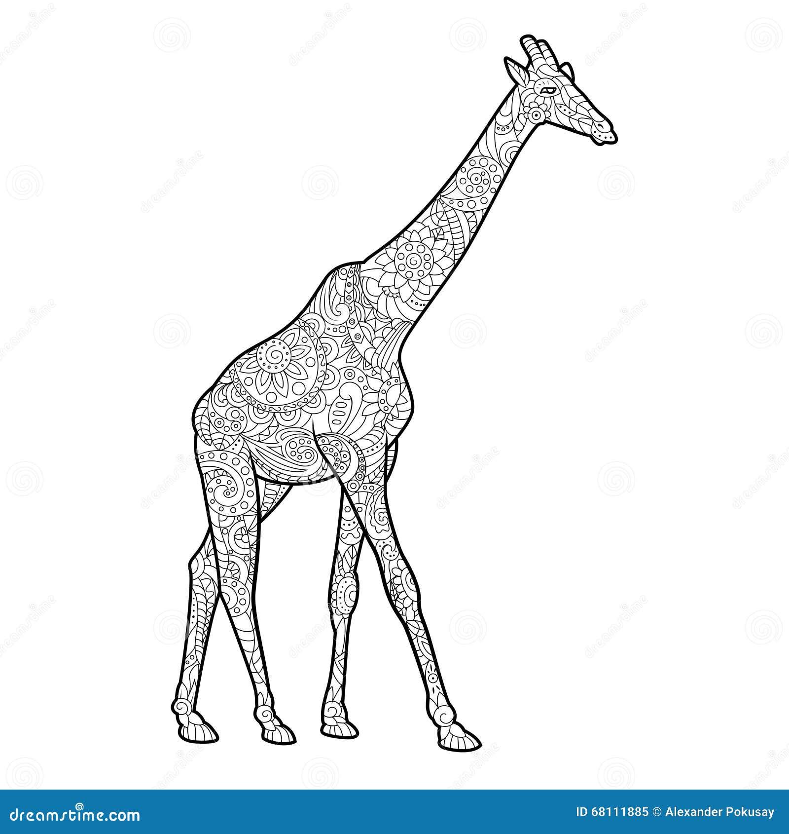 Libro Da Colorare Della Giraffa Per Il Vettore Degli Adulti