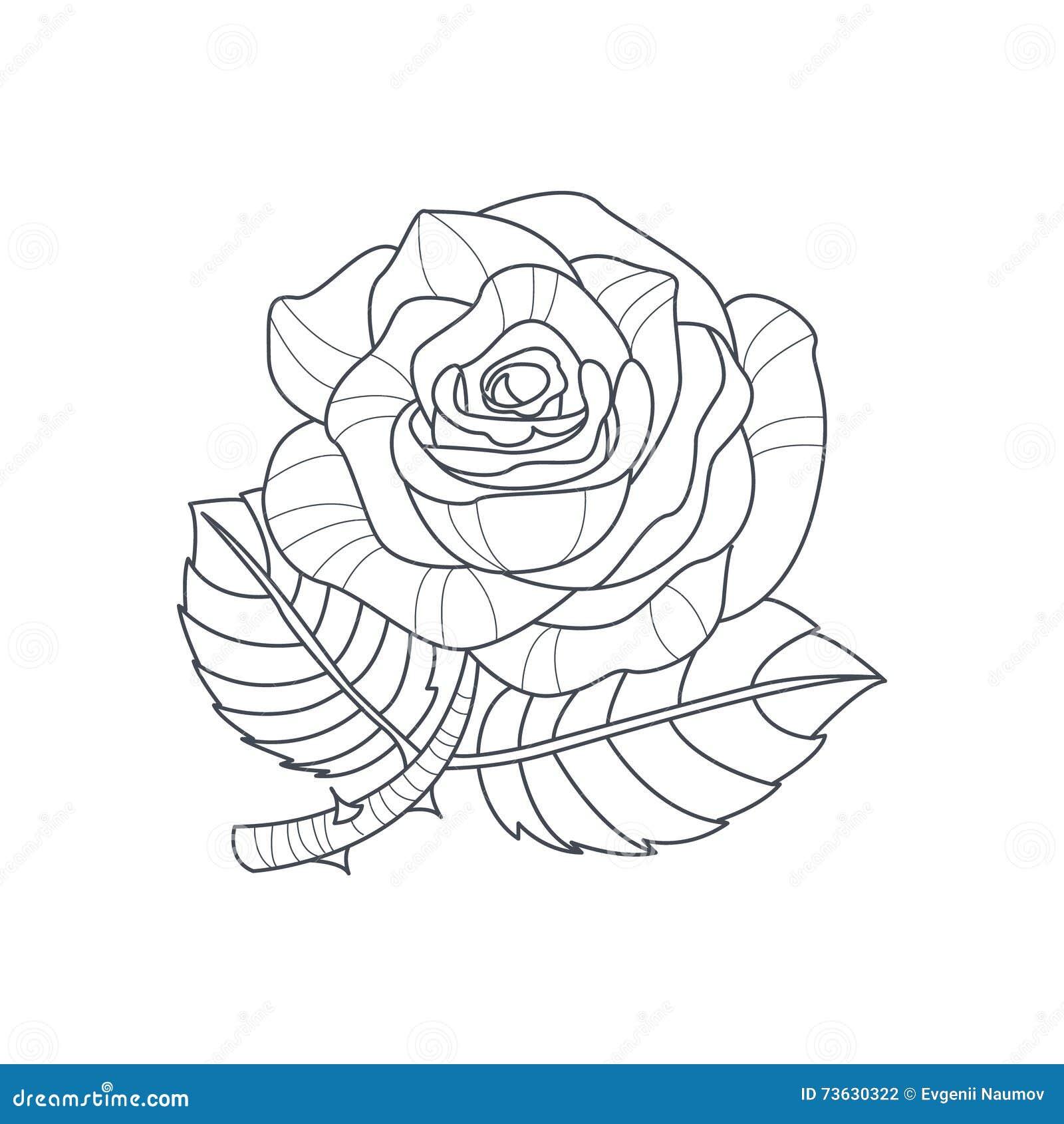 Libro da colorare di rose flower monochrome drawing for for Immagini da colorare di rose