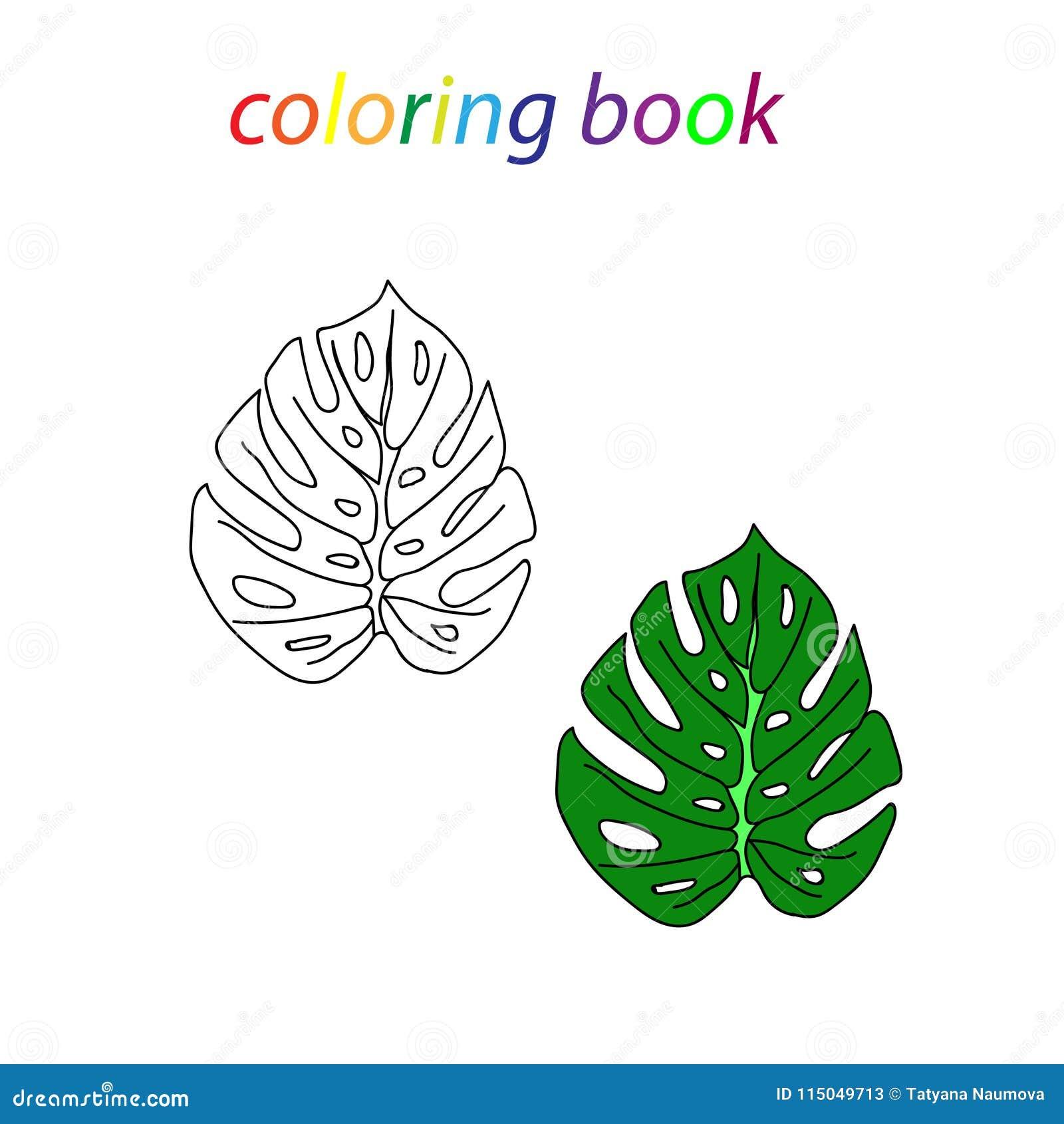 Libro Da Colorare Di Una Foglia Tropicale Per I Principianti Da