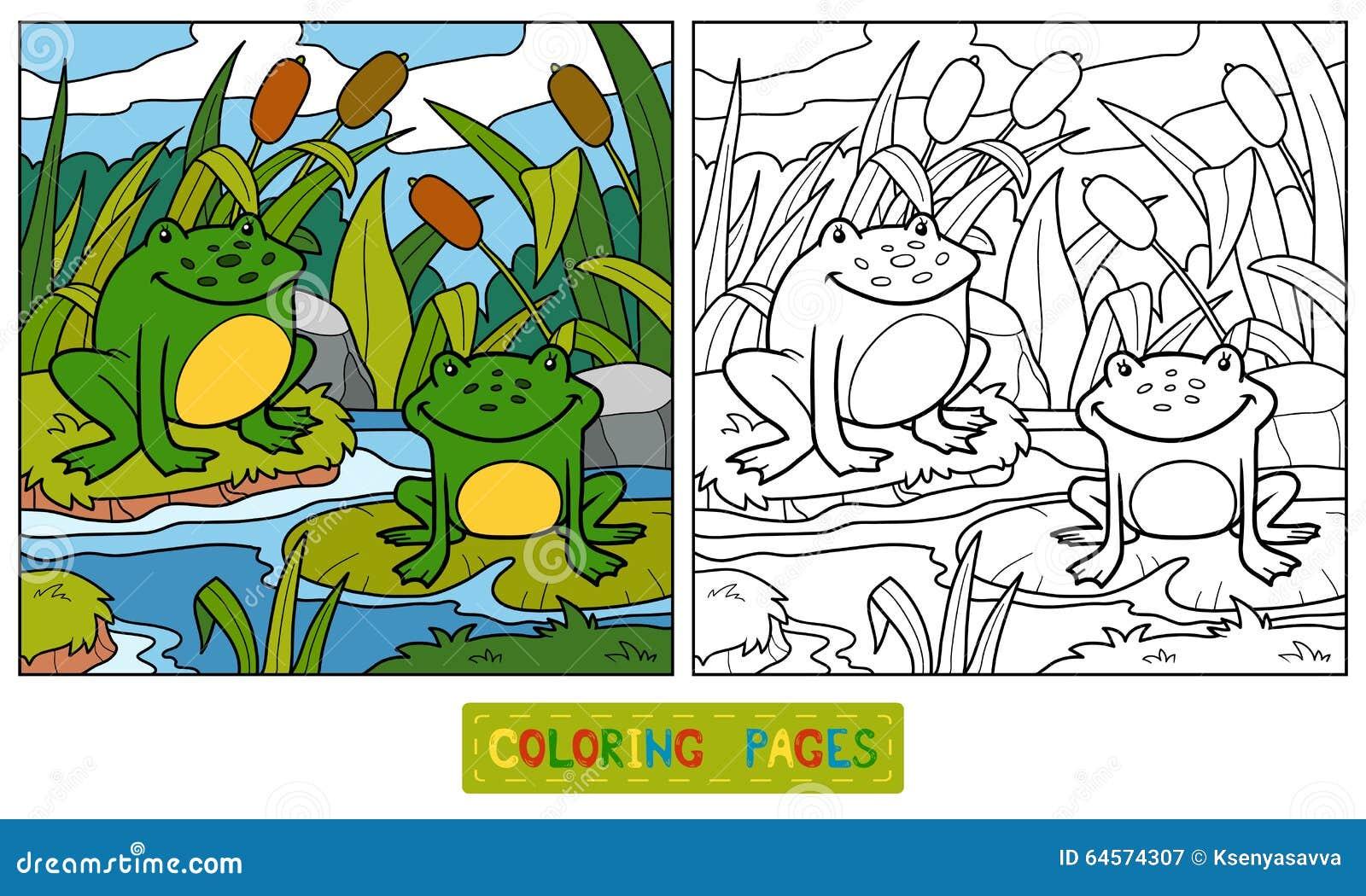 Libro Da Colorare Due Rane E Fondi Illustrazione Vettoriale Illustrazione Di Gioco Formazione 64574307