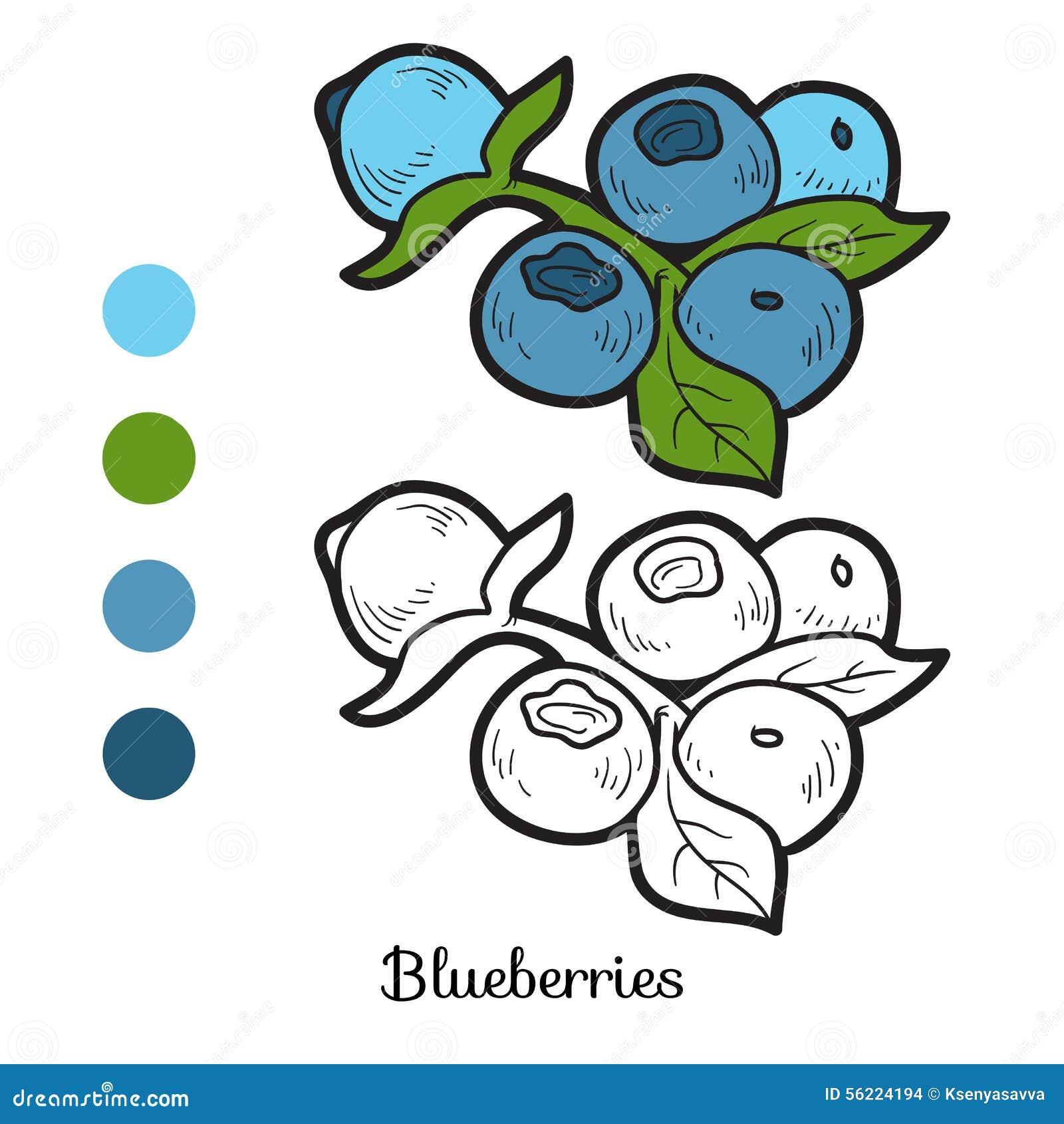 Libro da colorare frutta e verdure mirtilli - Colorare le pagine di verdure ...