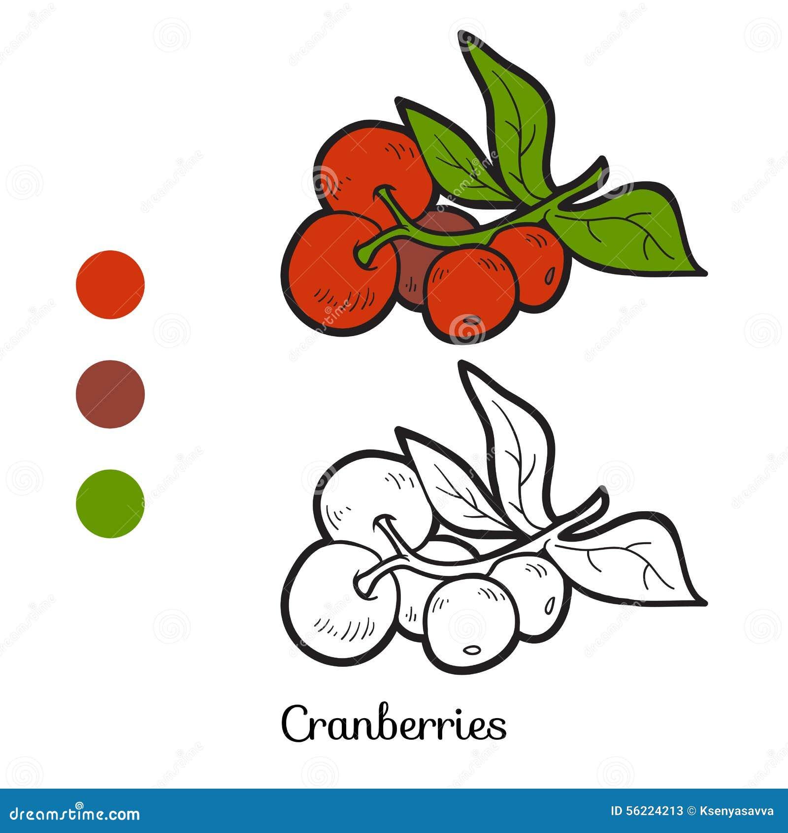 Libro da colorare frutta e verdure mirtilli rossi for Frutta da colorare e ritagliare