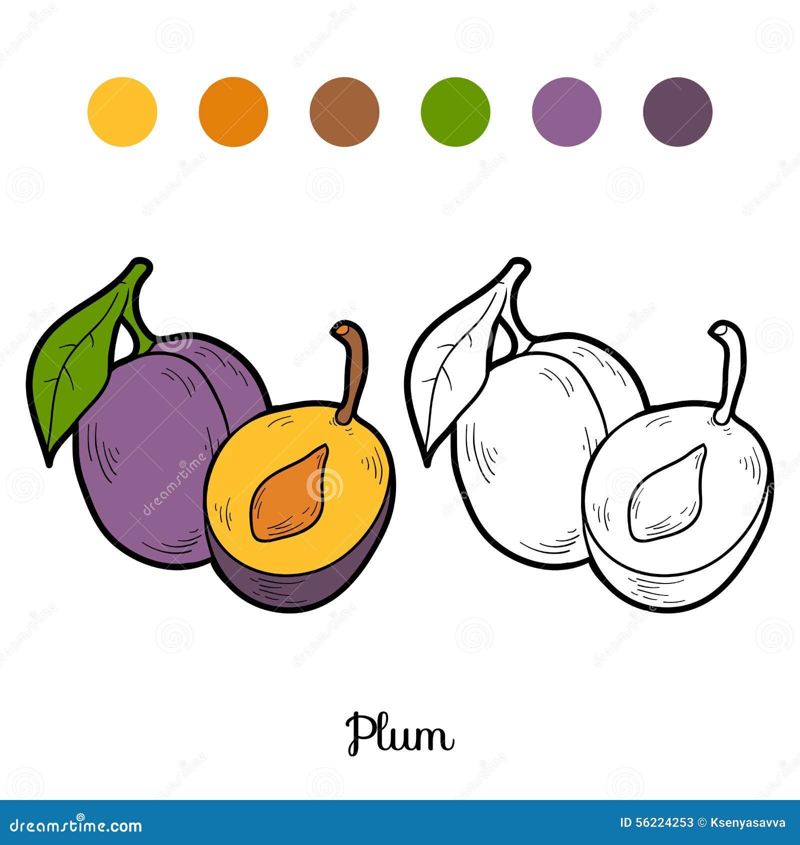 Libro da colorare frutta e verdure prugna illustrazione - Vaschette da bagno per bambini ...