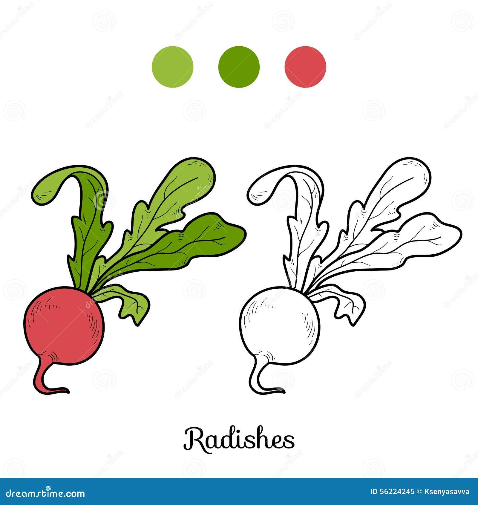 Libro da colorare frutta e verdure ravanelli for Frutta da colorare e ritagliare