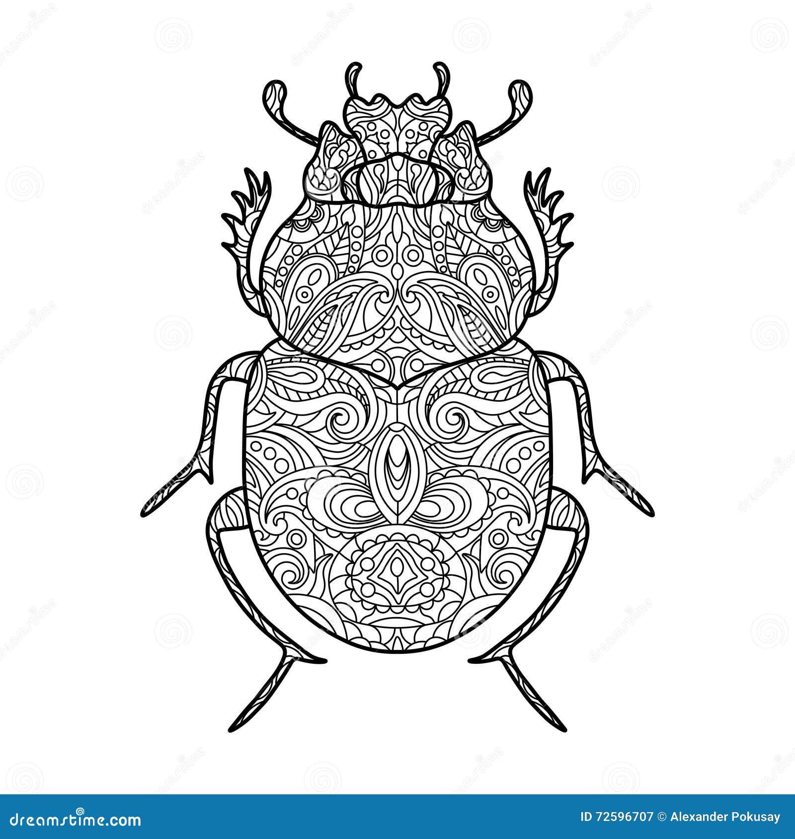 Libro De Colorear Del Escarabajo Del Escarabajo Para El Vector De ...