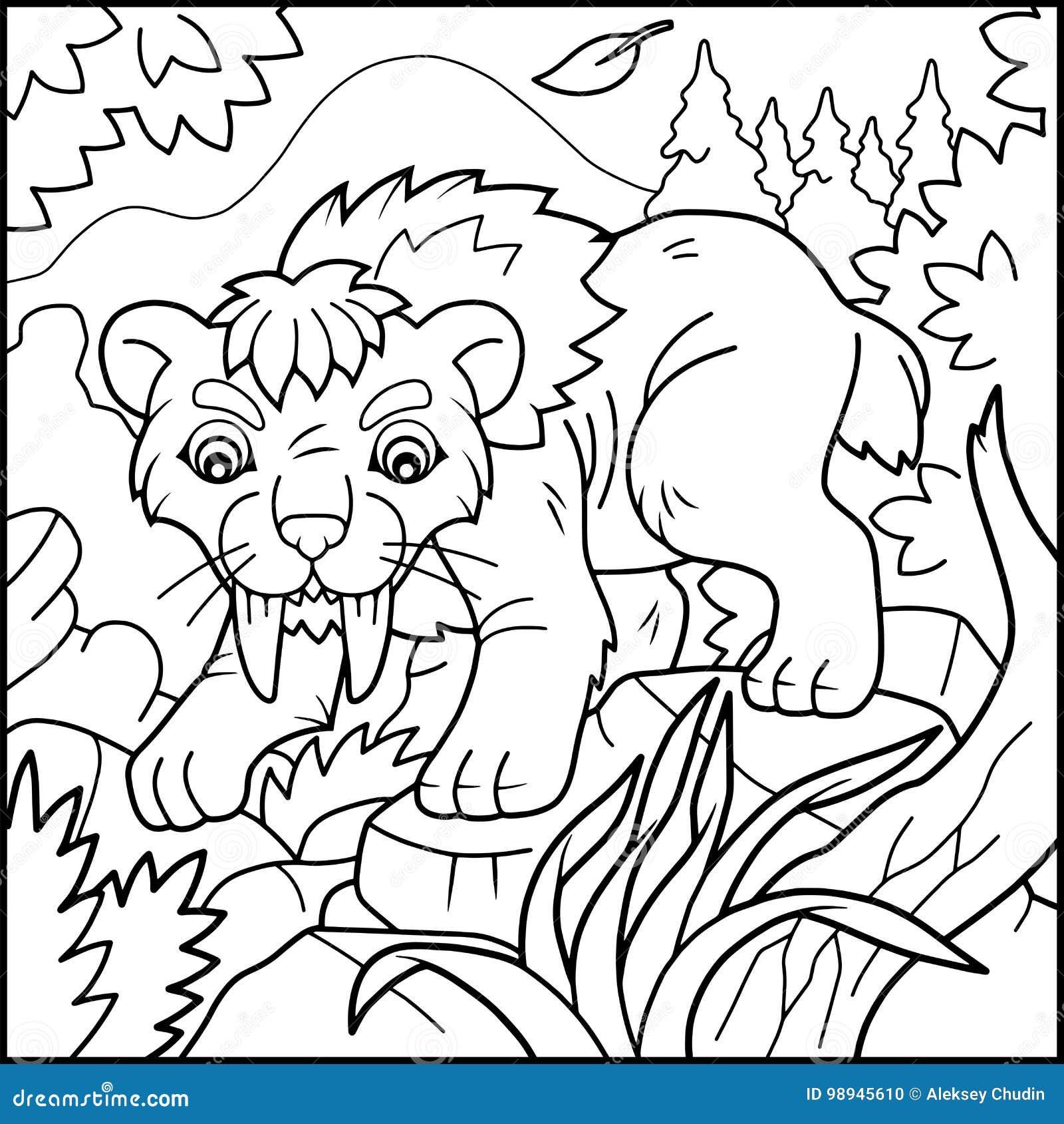 Libro De Colorear Del Tigre Del Sable-diente Ilustración del Vector ...