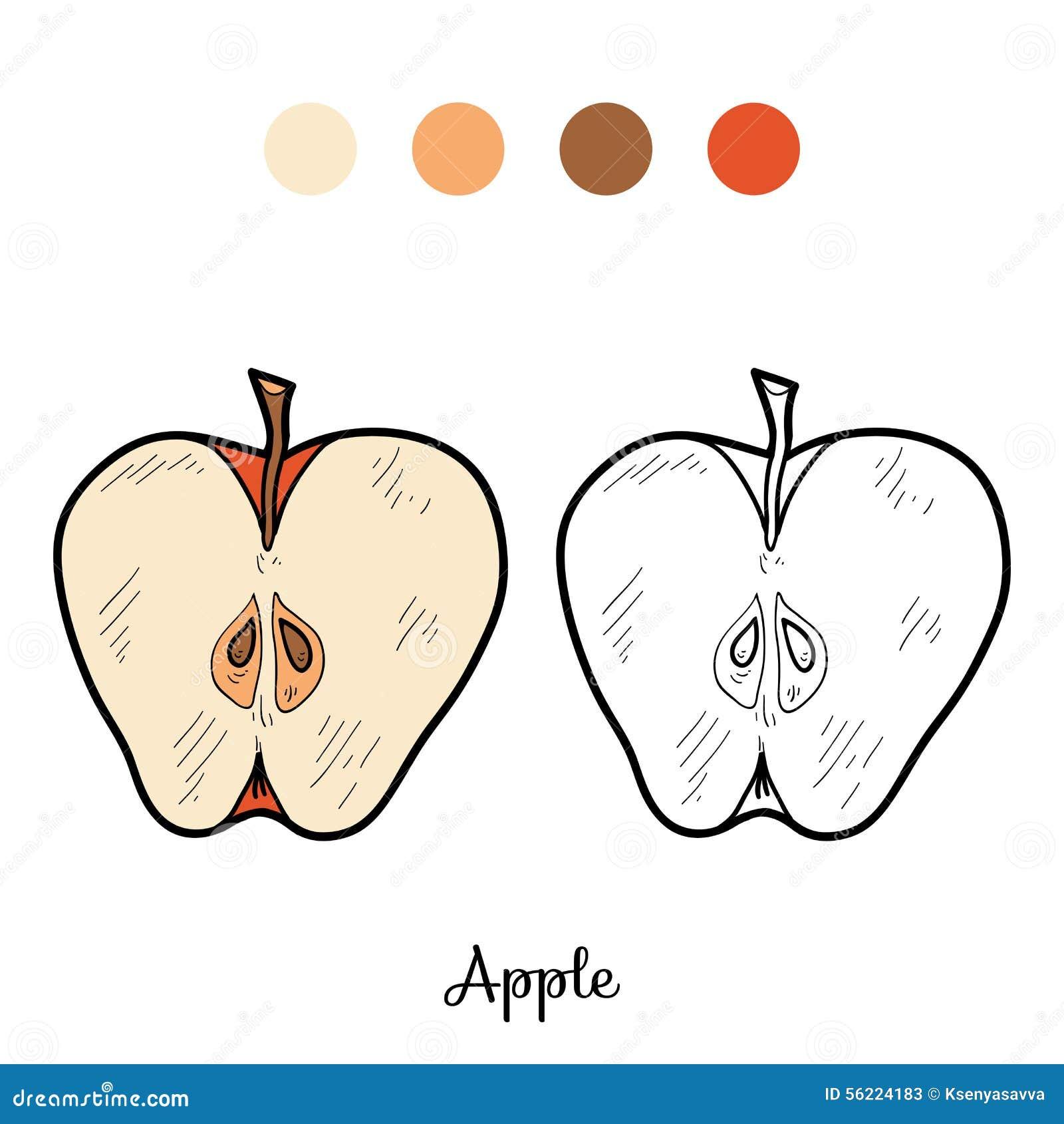 Libro De Colorear: Frutas Y Verduras (manzana) Ilustración del ...