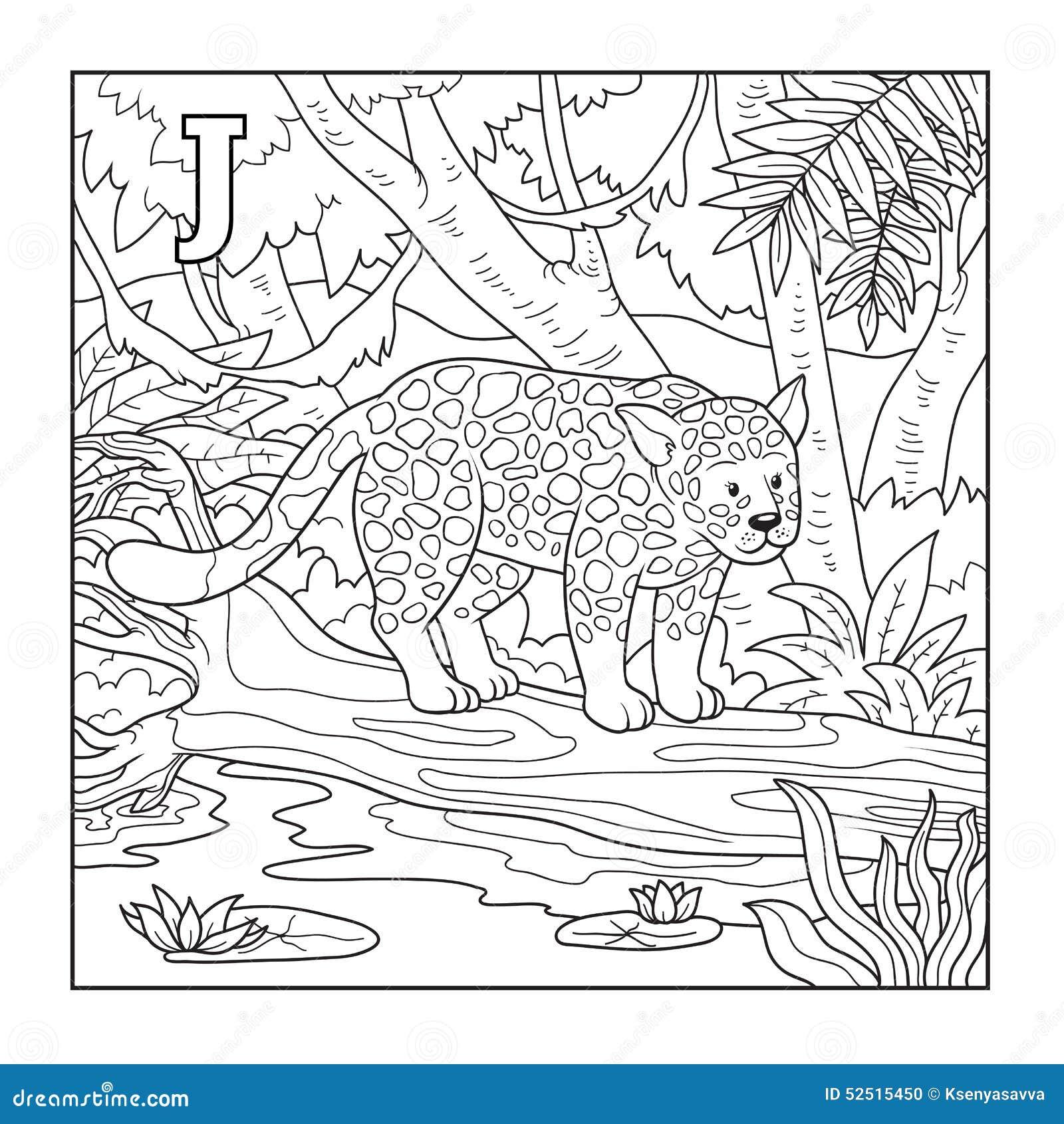 Libro De Colorear (jaguar), Ejemplo (letra J) Ilustración del Vector ...