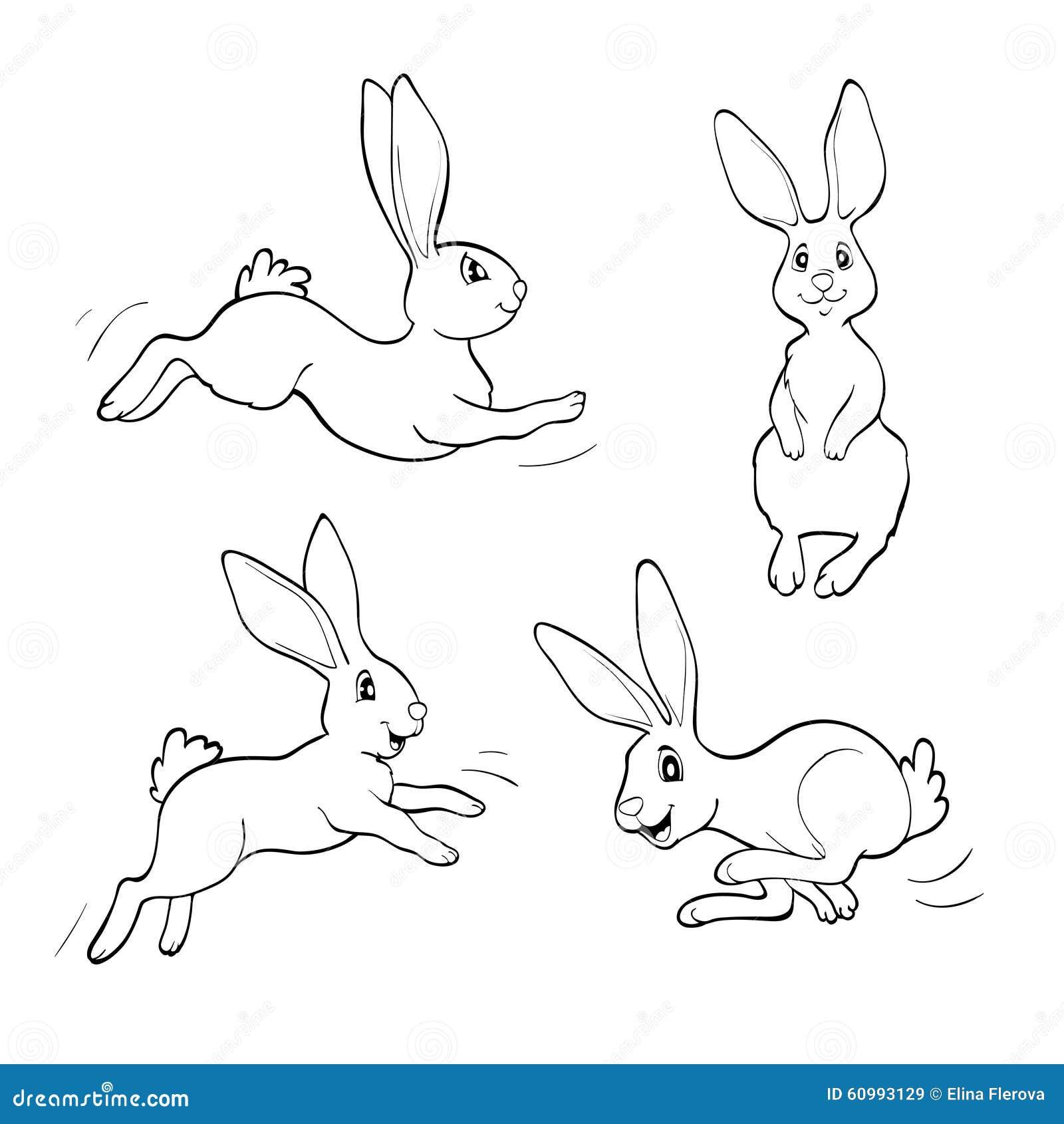 Libro De Colorear O Página Cuatro Conejos Del Trasero Ilustración ...
