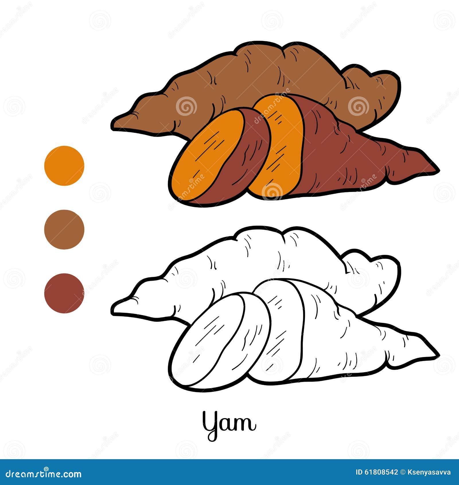 Libro De Colorear Para Los Niños Frutas Y Verduras ñame