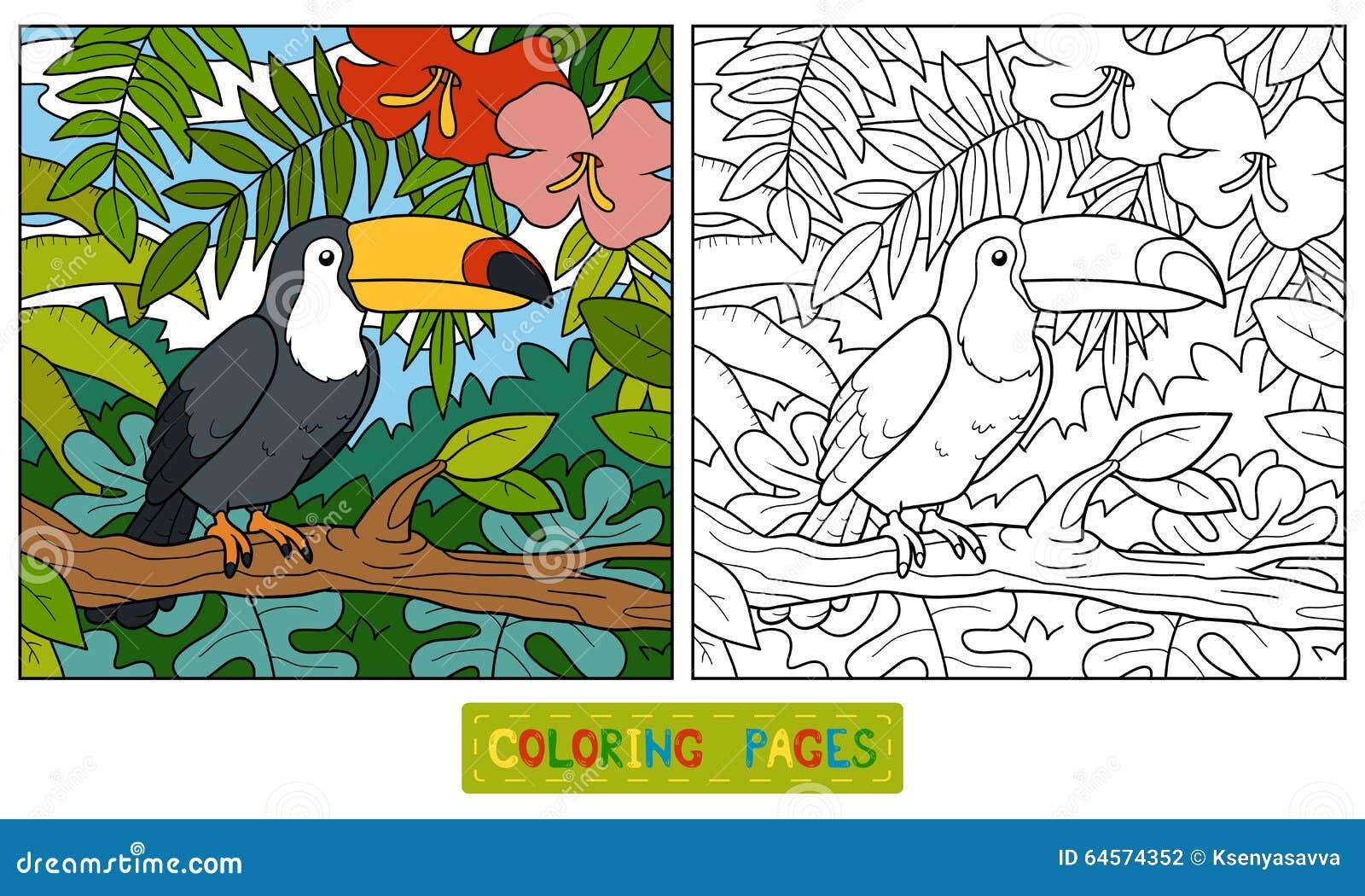 Libro De Colorear (tucán Y Fondo) Ilustración del Vector ...