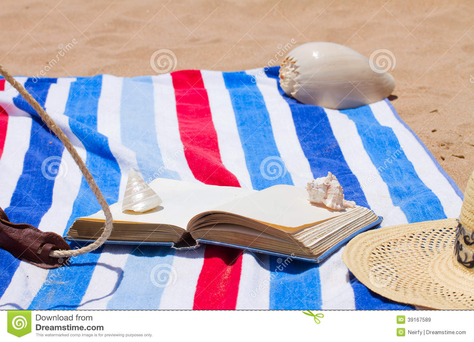 Libro en la toalla de playa