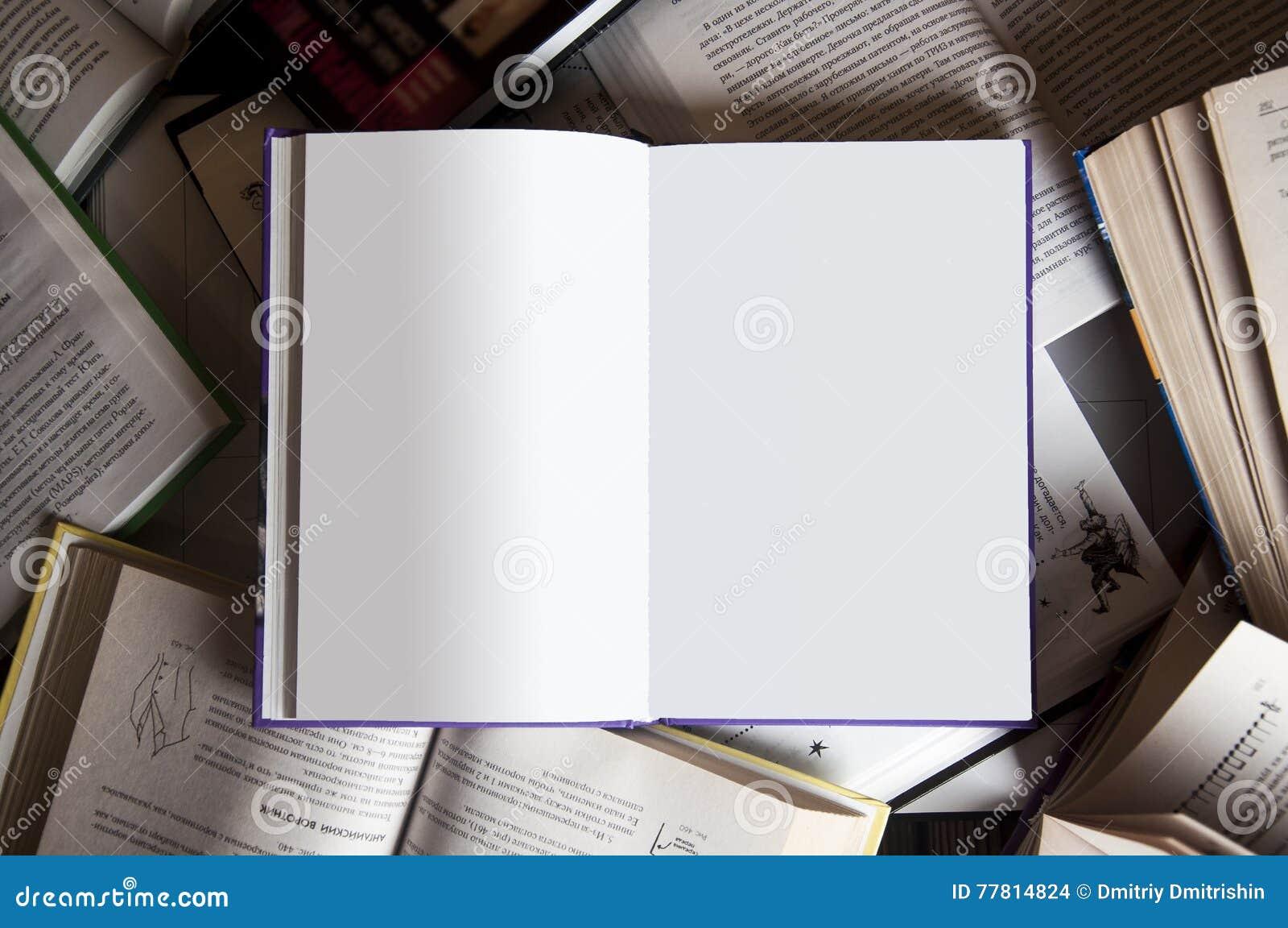 Libro entre los libros