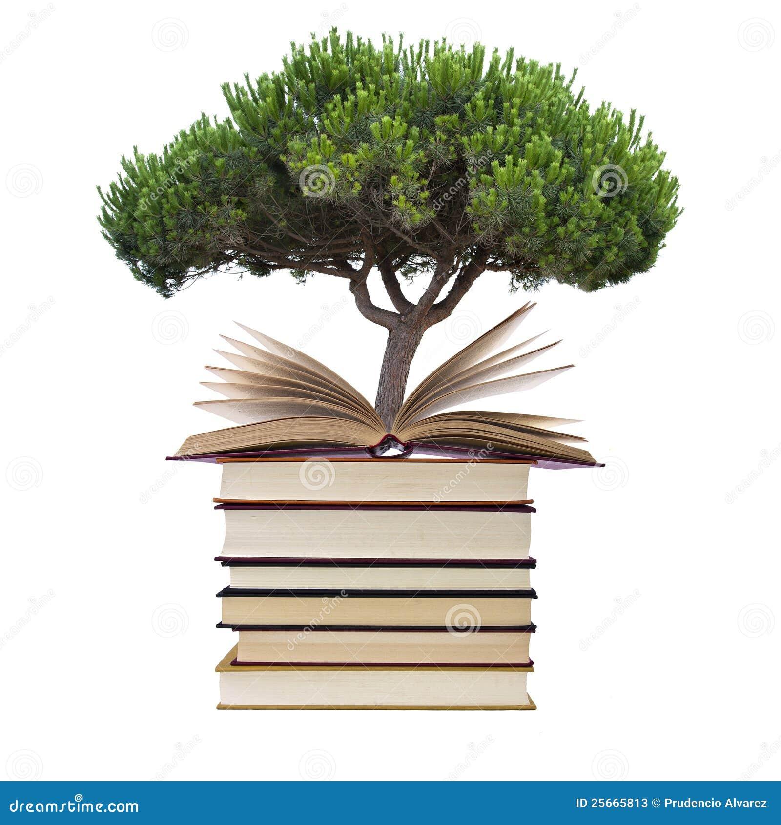 Libros con el árbol