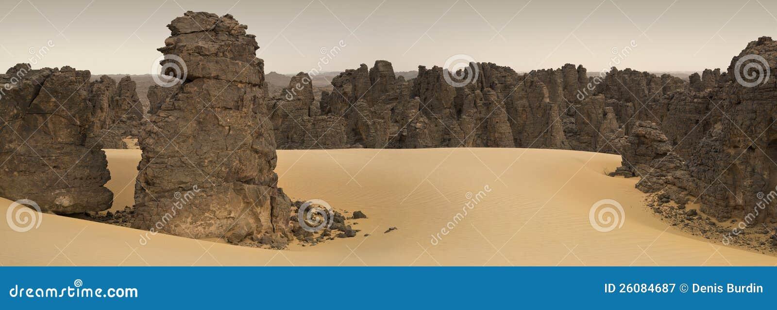 Libyan沙漠