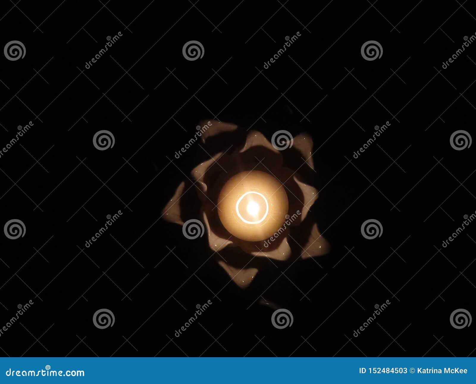 Licht van Lotus