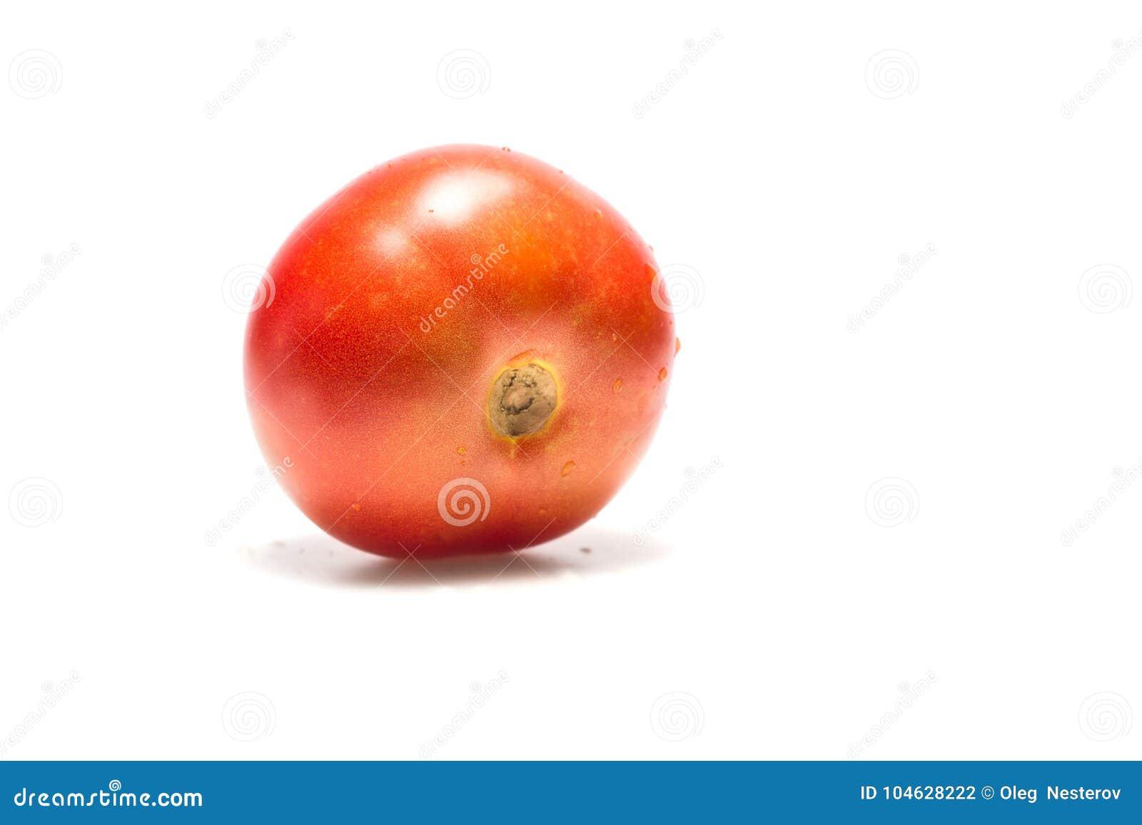 Download Lichtrode Tomaat Op Een Witte Achtergrond Stock Foto - Afbeelding bestaande uit vitamine, helder: 104628222