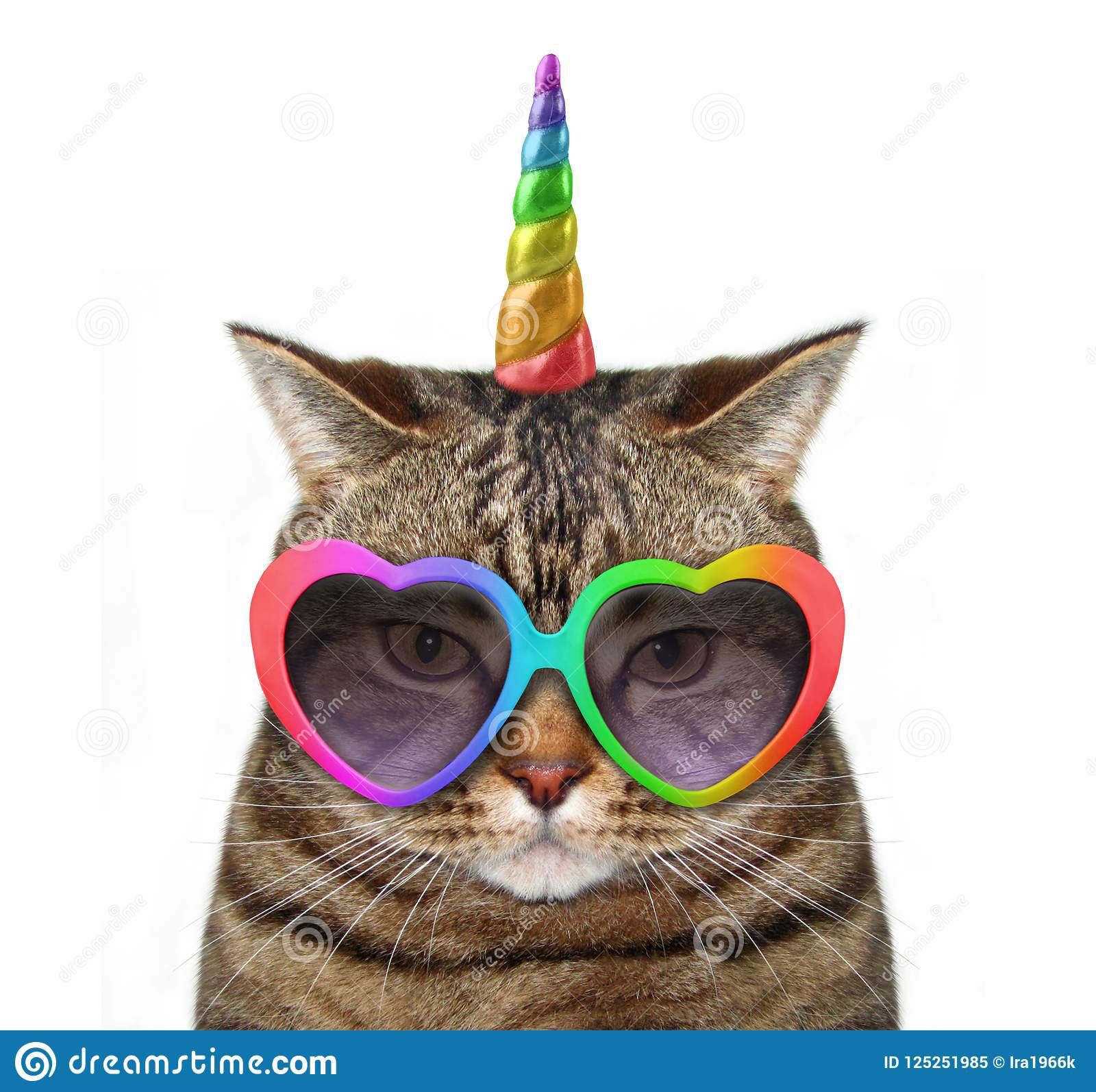 Licorne de chat en verres