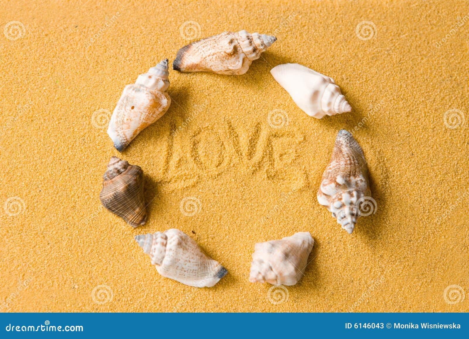 Liebes-Shells auf dem Strand