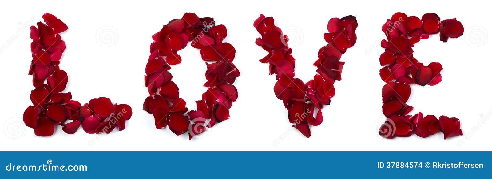 Liefde die met roze bloemblaadjes wordt geschreven