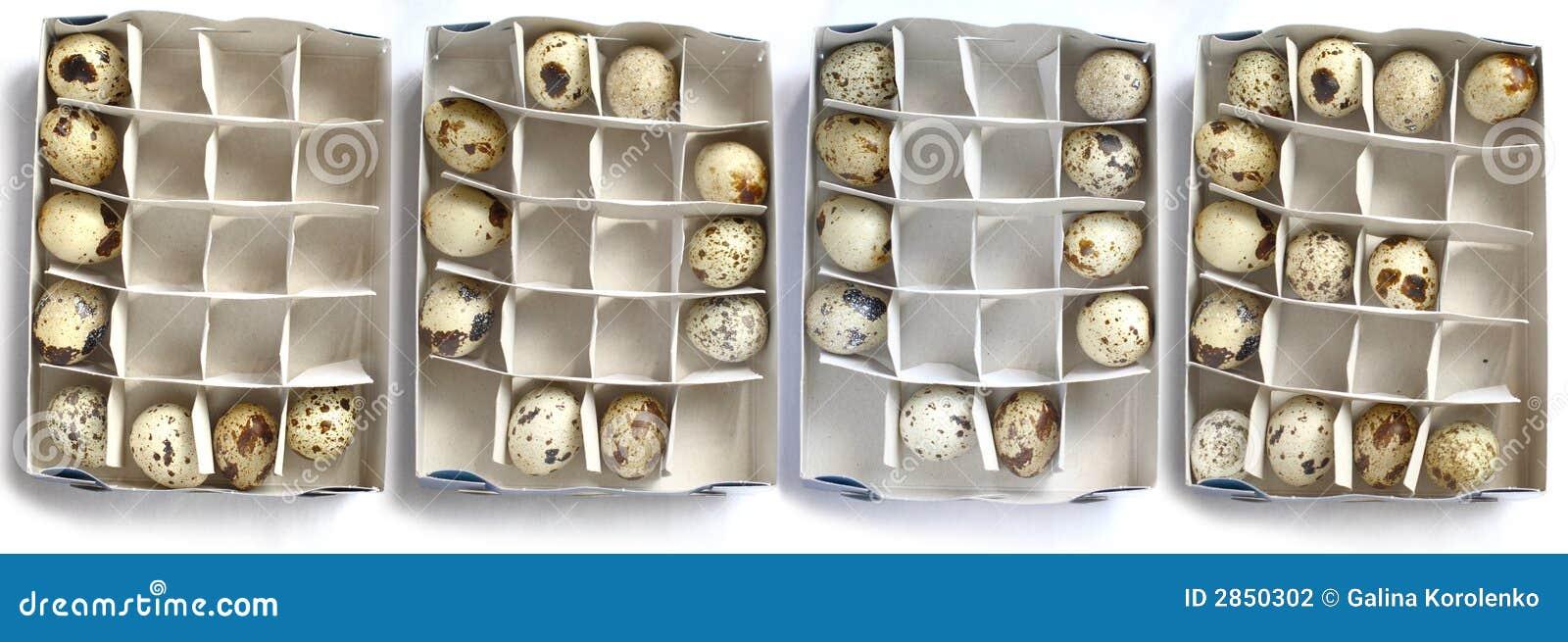 Liefde en eieren
