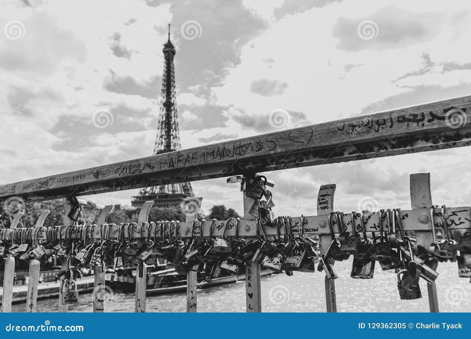 Liefdesloten op een brug over de Zegen in Parijs