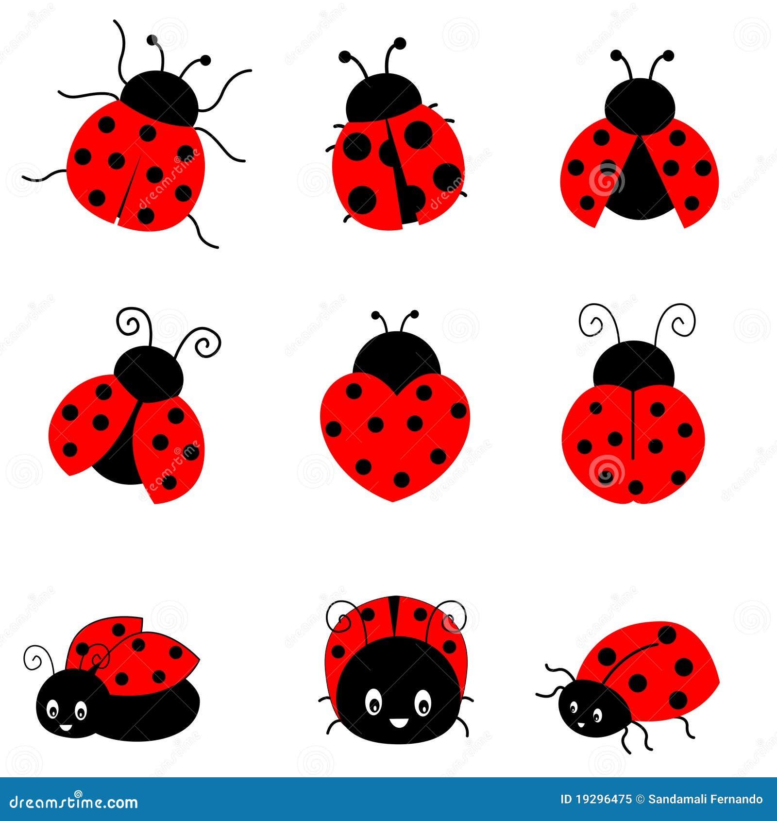 Lieveheersbeestje vector illustratie. Afbeelding bestaande ...