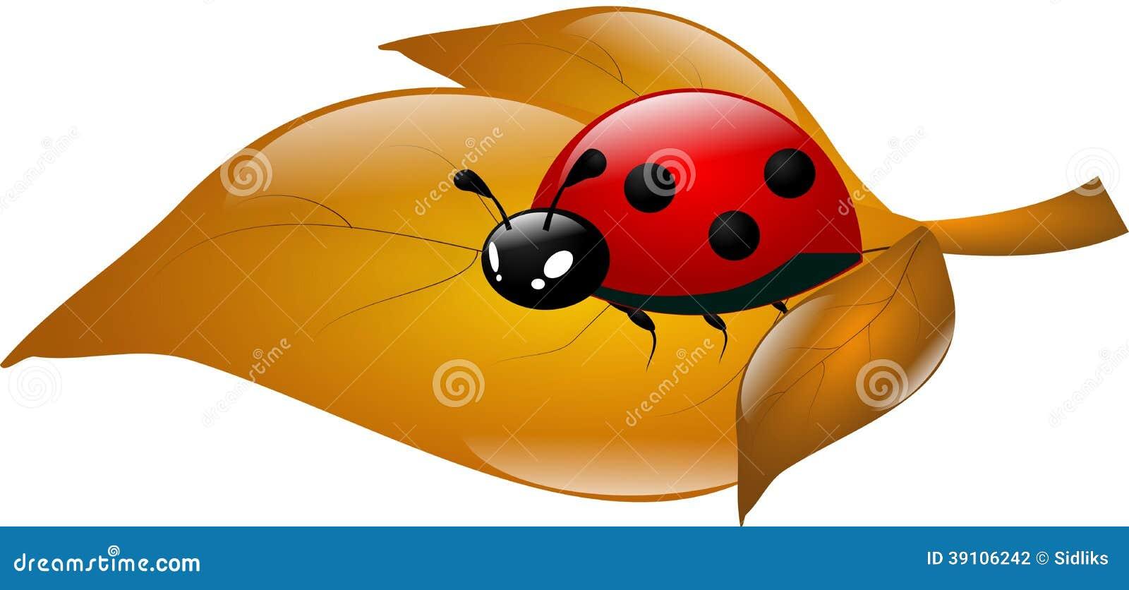 Lieveheersbeestje op droog blad