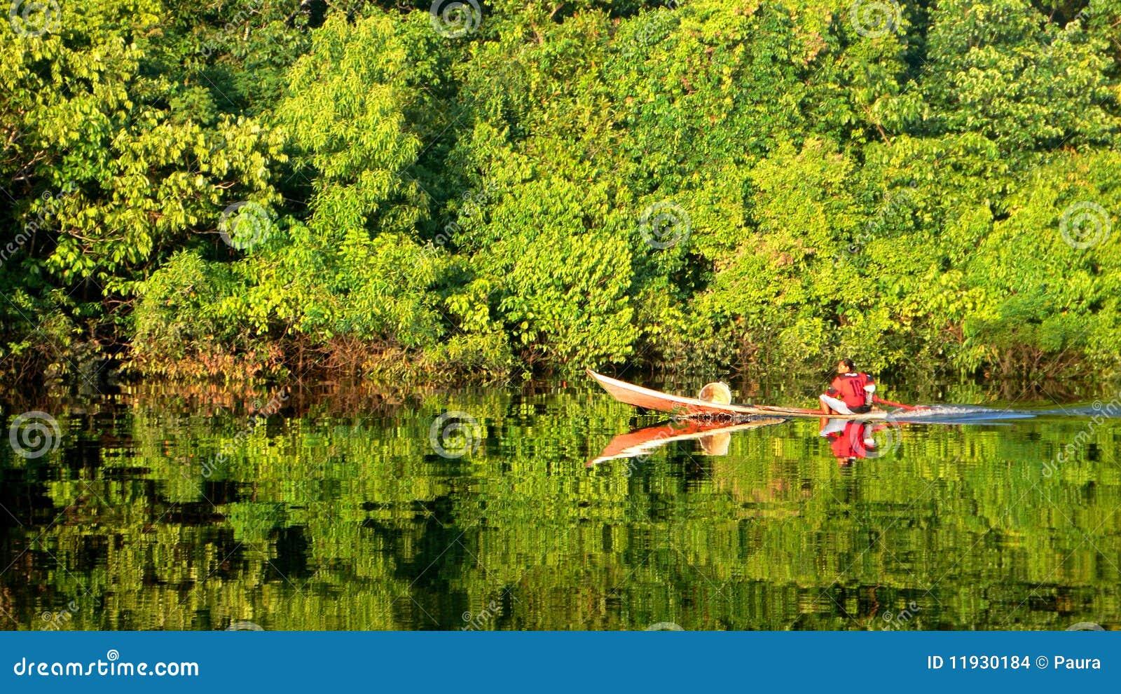 Life in Amazon Jungle (The Amazonia)