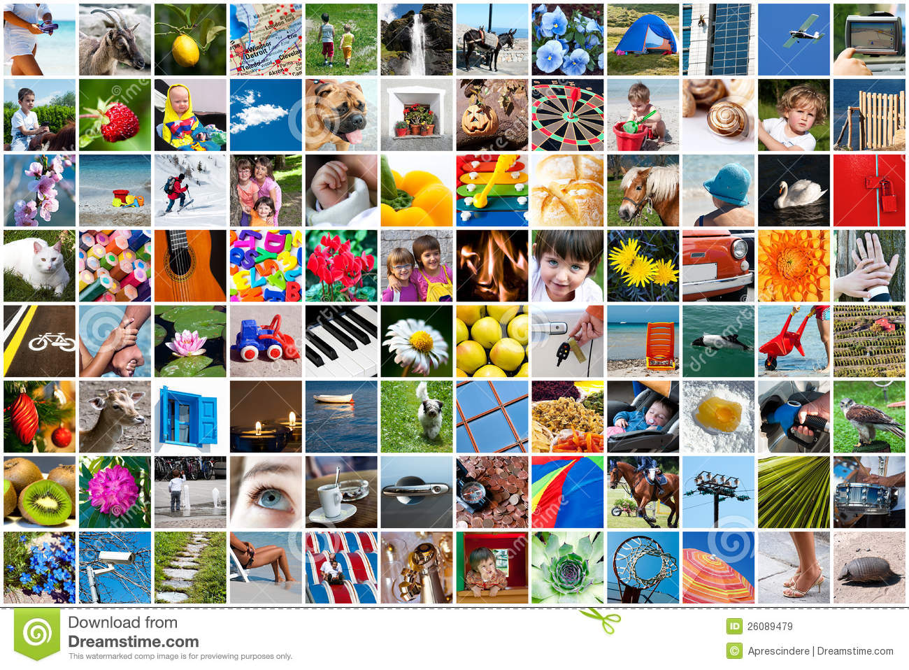 Life Collage Royalty Free Stock Images Image 26089479