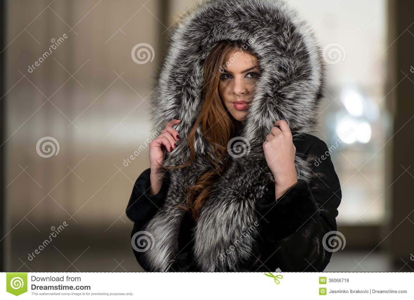 Life Of Luxury Royalty Free Stock Photos Image 36066718
