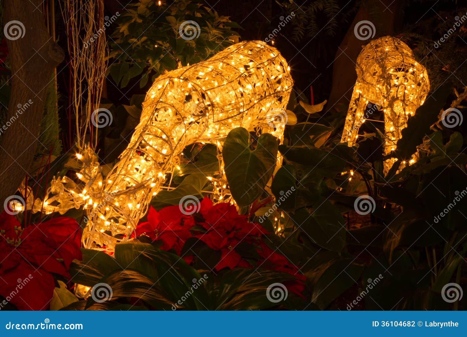 Life size reindeer decoration with bright christmas lights - Renna natalizia luminosa per giardino ...
