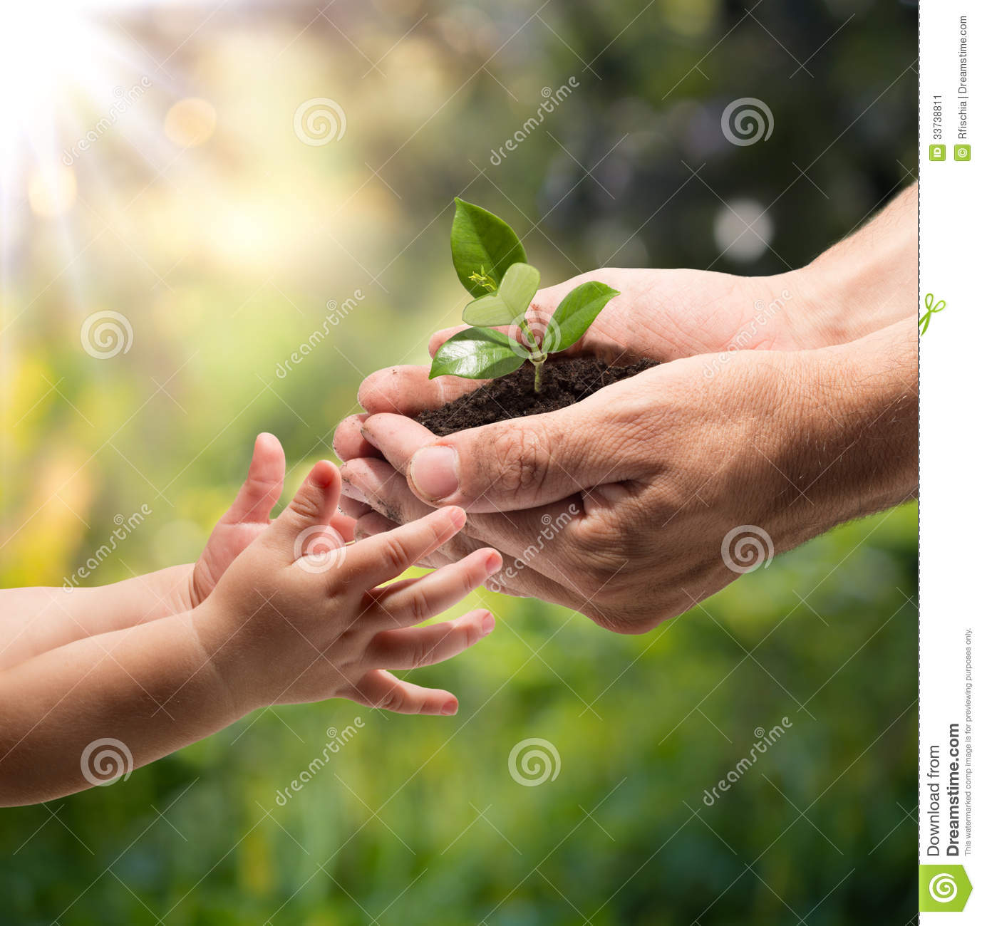 Life In Your Hands - Plant Whit Garden Background Stock Image - Image ...