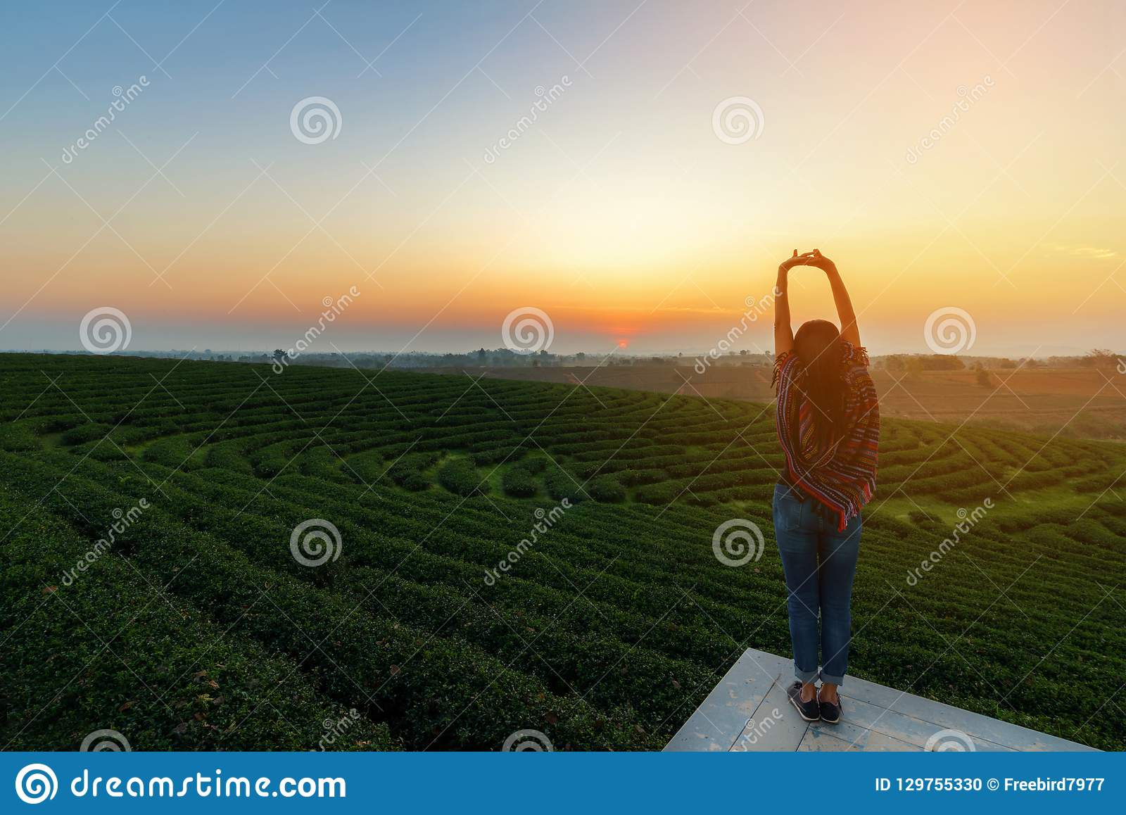Lifestyle traveler women happy feeling good relax and freedom facing on the natural tea farm in the sunrise morning,