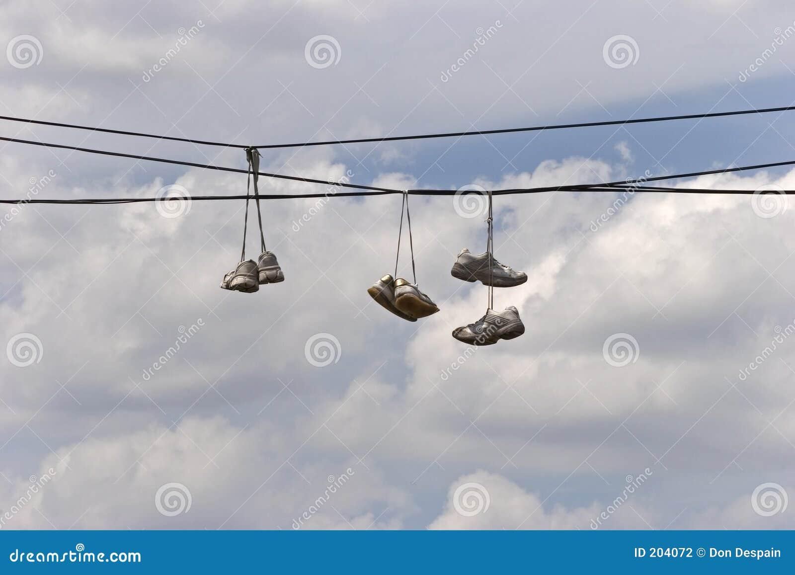 Ligan shoes tennisterritoriet