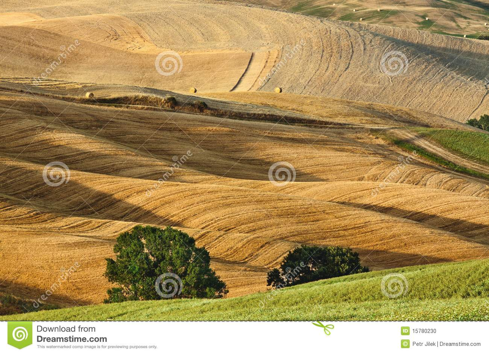 Liggandesommar tuscany
