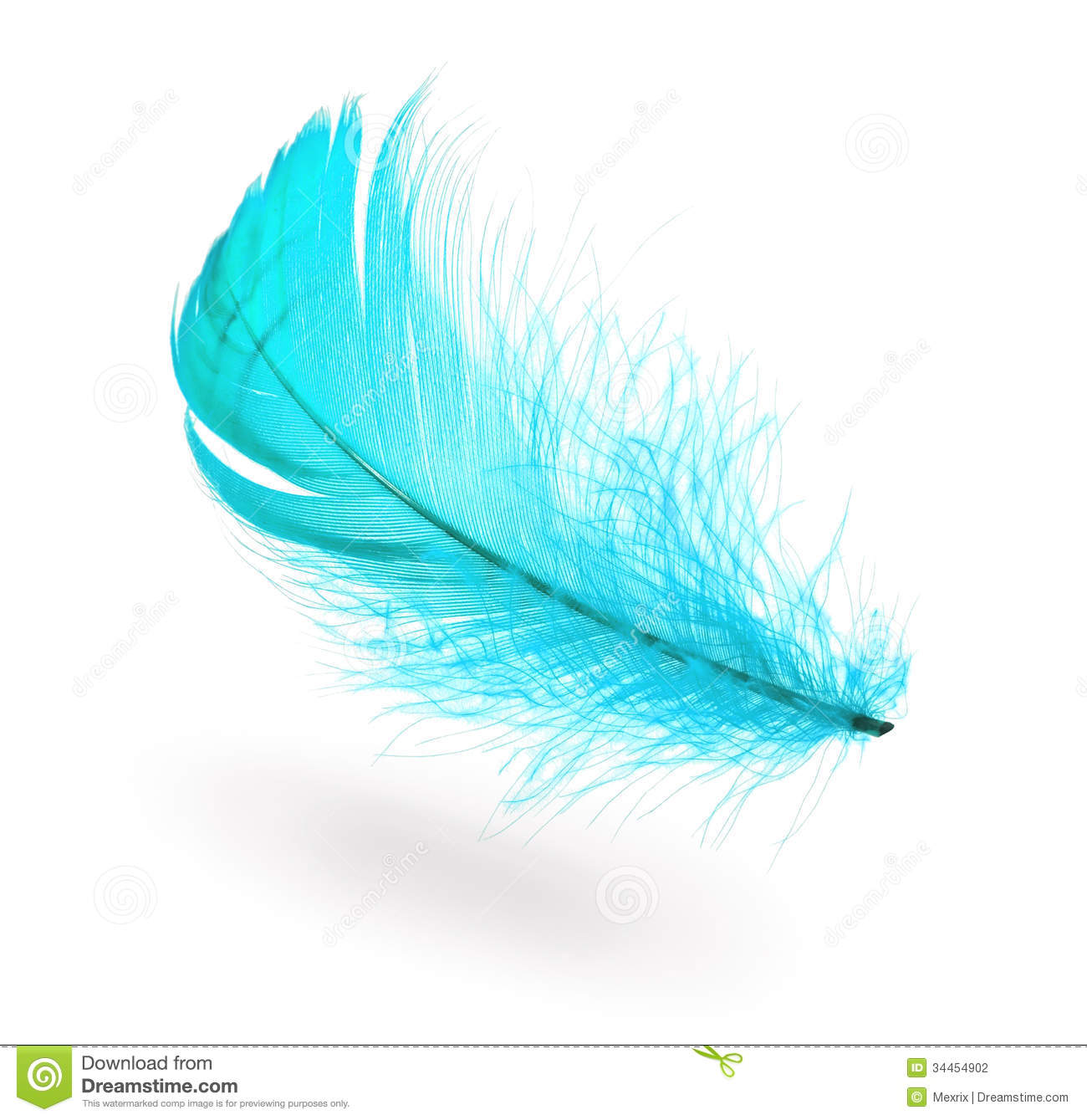 Light Blue Feather Stock Photography Image 34454902